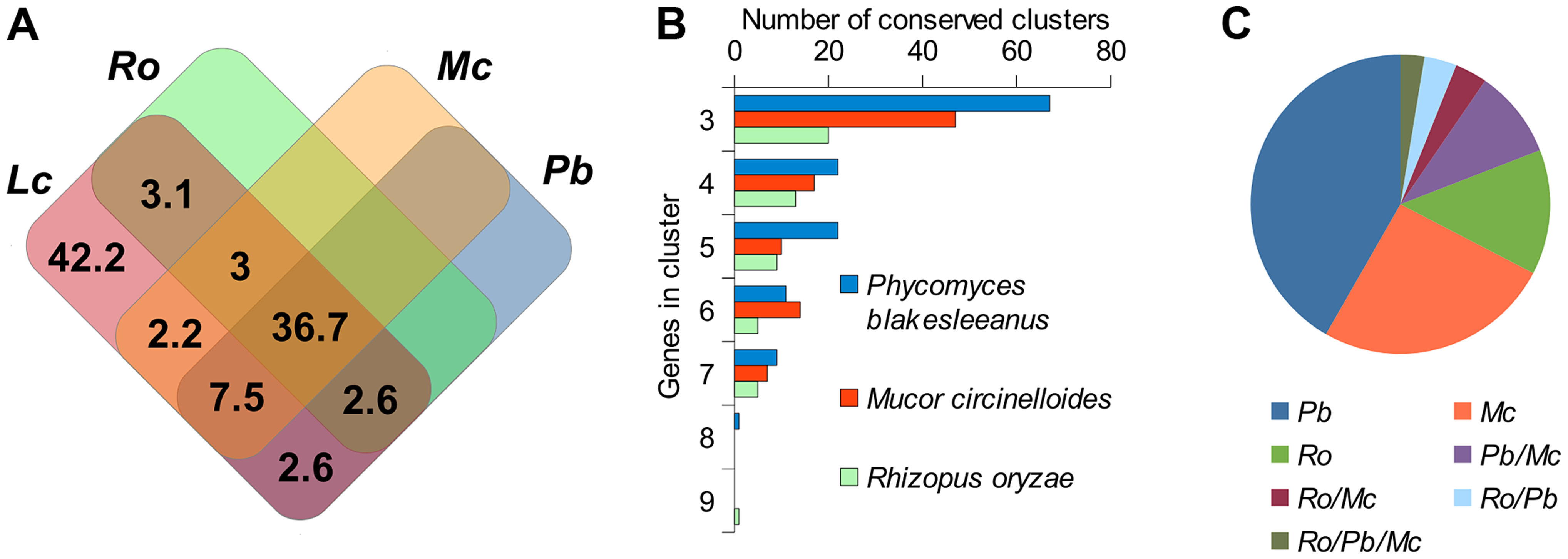 Conserved regions of the <i>L. corymbifera</i> genome with other mucoralean genomes.