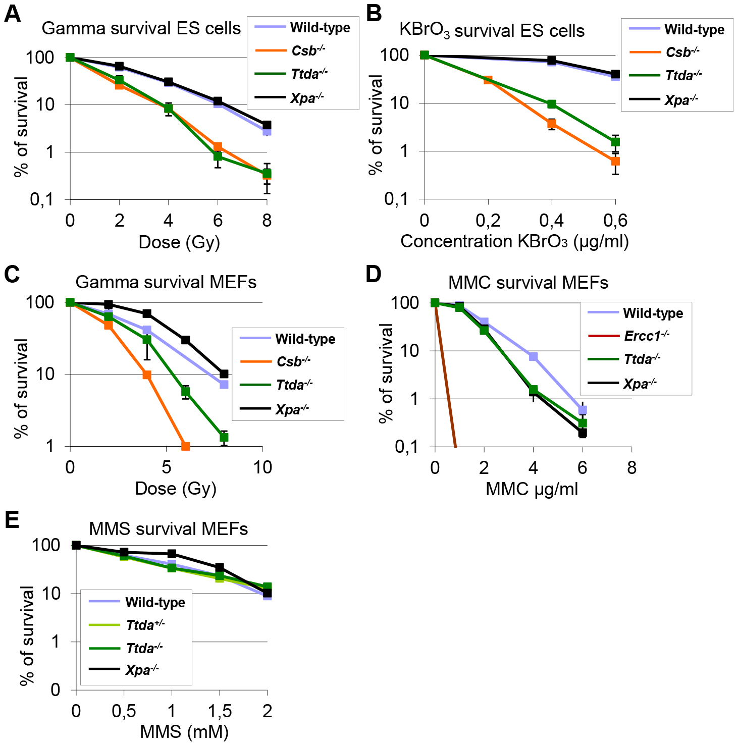 <i>Ttda<sup>−/−</sup></i> ES cells and MEFs exhibit oxidative DNA damage sensitivity.