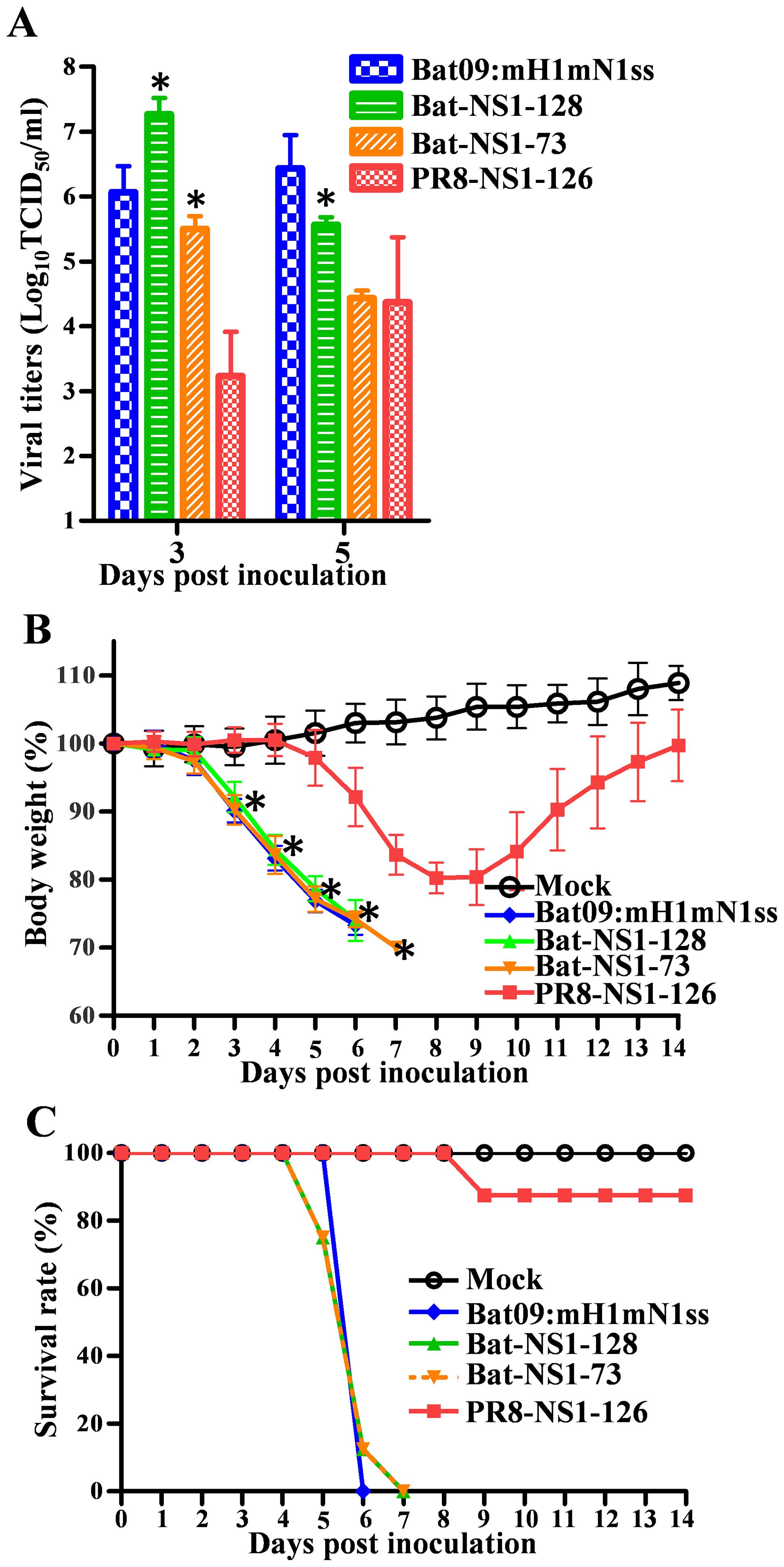 Pathogenicity of Bat-NS1 mutants in mice.