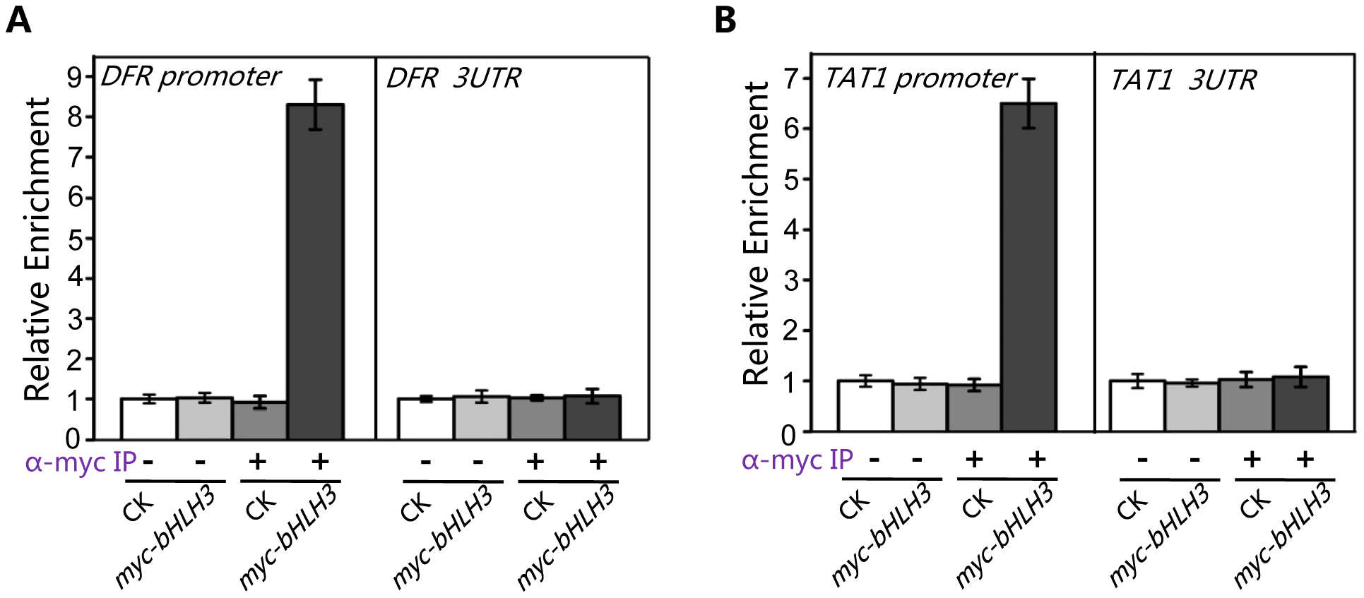 bHLH3 directly binds to promoter sequences of <i>TAT1</i> and <i>DFR</i> in ChIP-PCR assay.