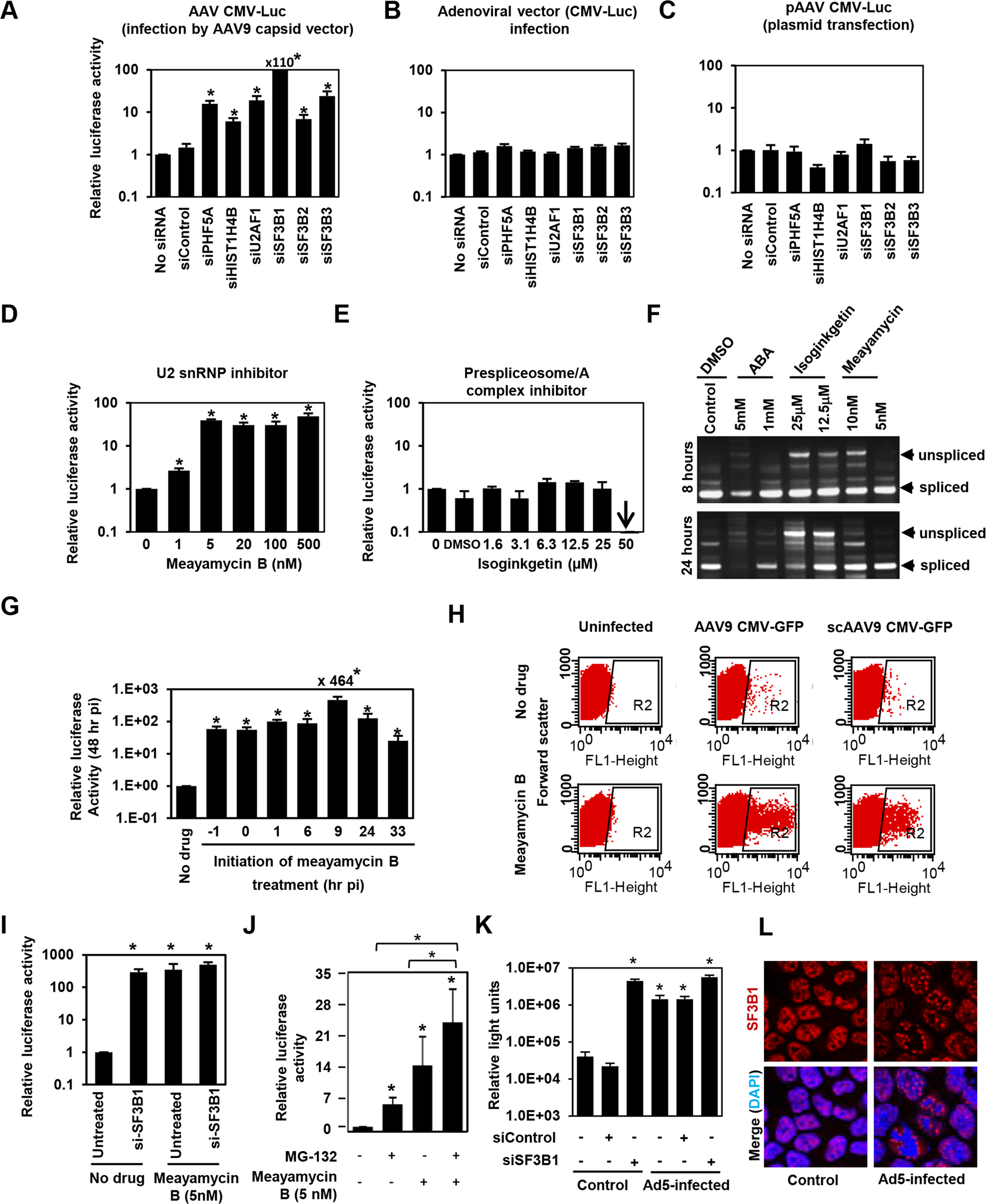 The U2snRNP complex plays the key role in restricting AAV vector transduction.