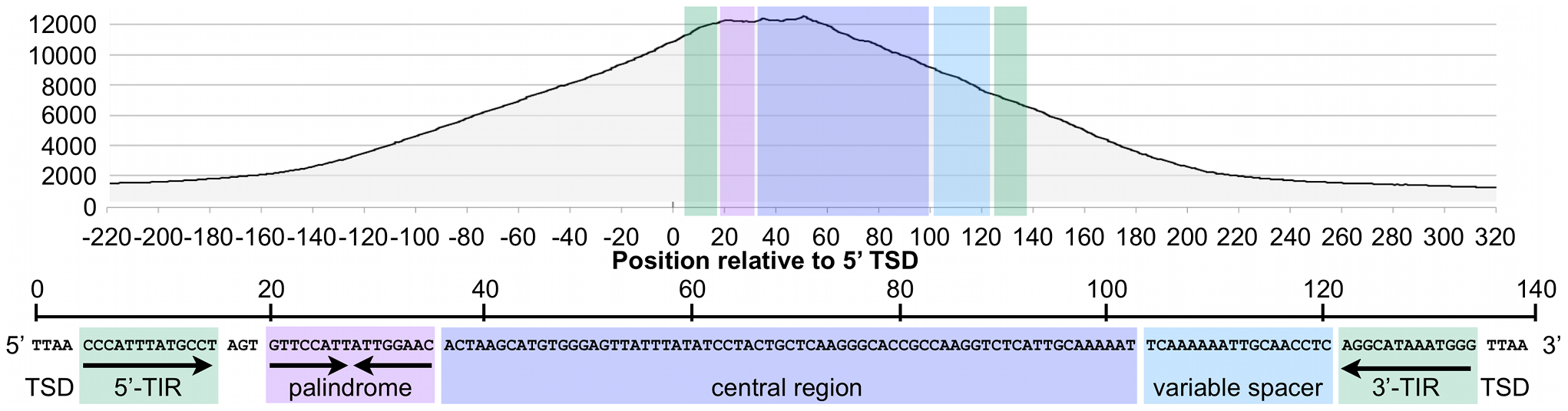 The CSB-PGBD3 fusion protein binds preferentially to the 5′ palindromic sequence of all bound MER85s in the human genome.