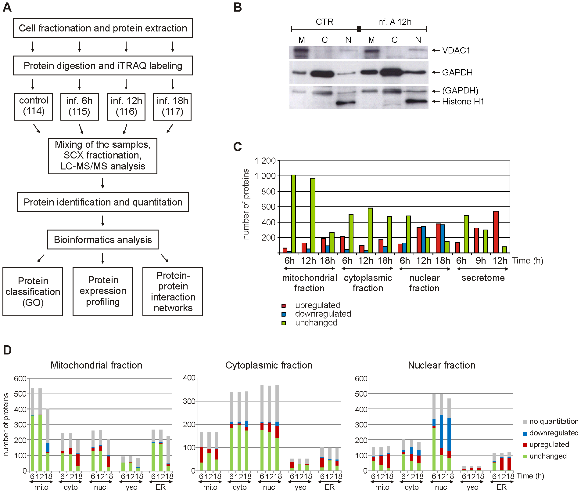 Quantitative subcellular proteome and secretome analysis of influenza A virus-infected human primary macrophages.