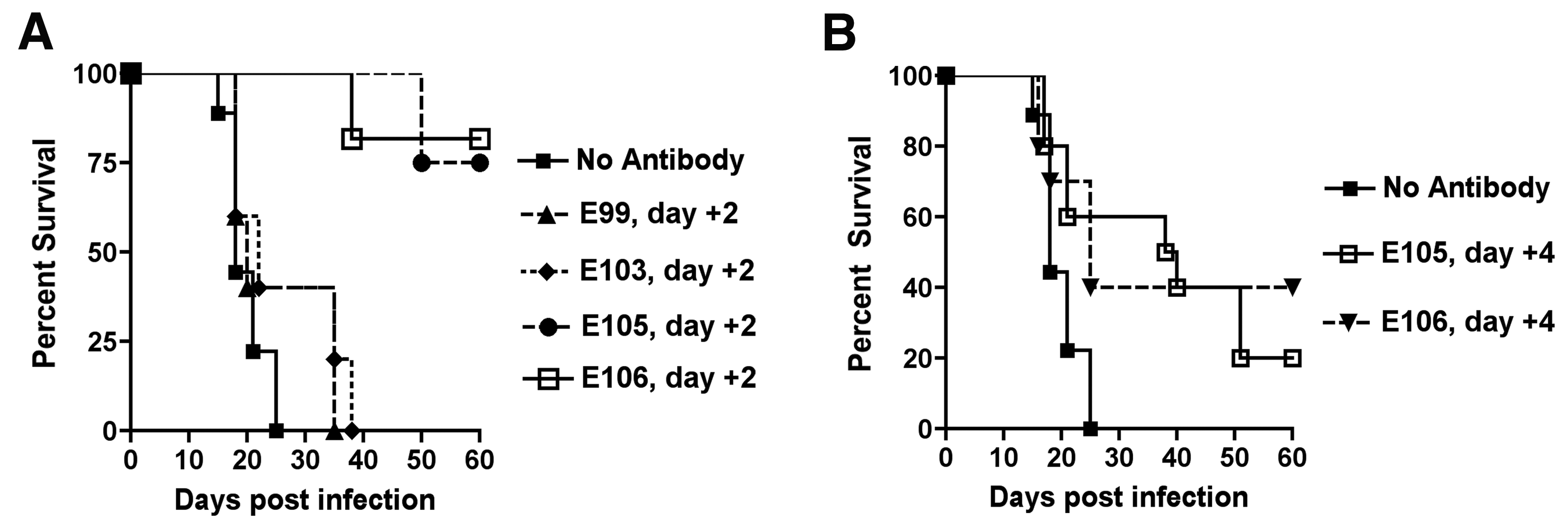 Therapeutic efficacy of strongly neutralizing antibodies in mice after DENV-1 infection.