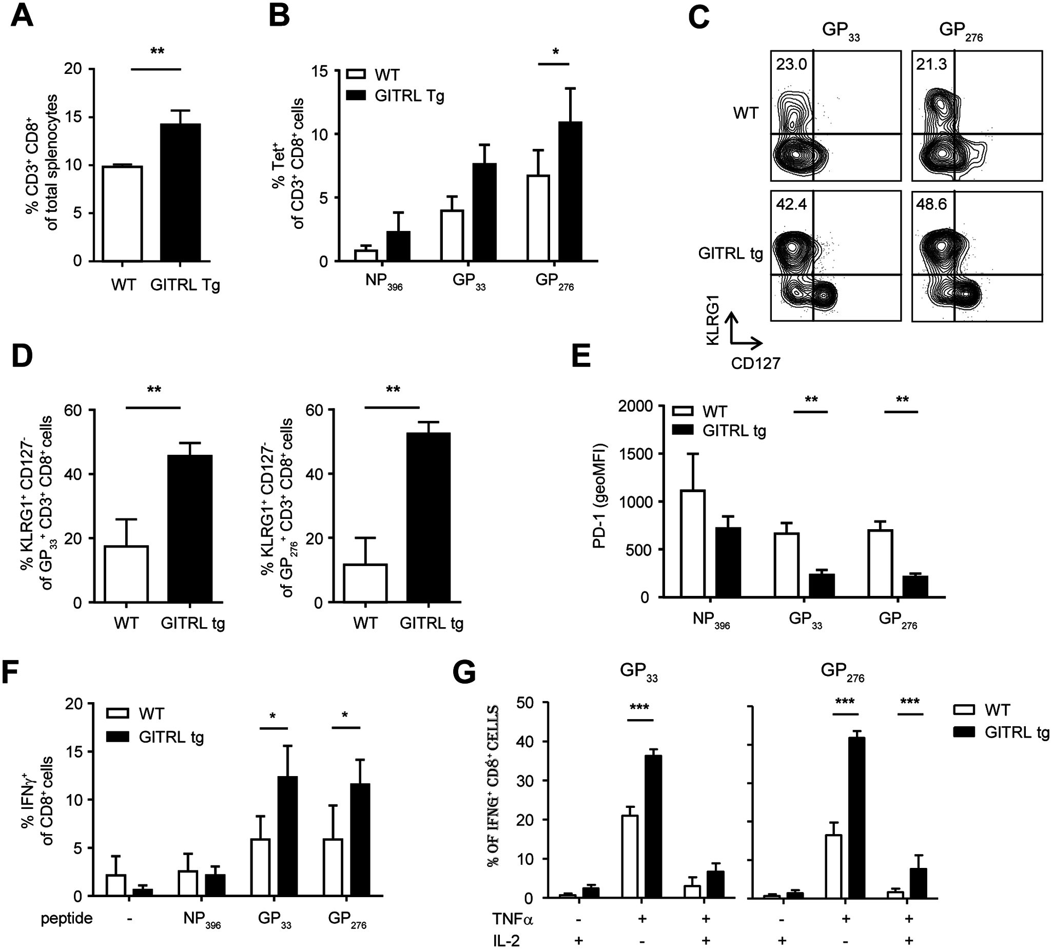 Anti-viral CD8 T cell responses are less exhausted in GITRL tg mice.