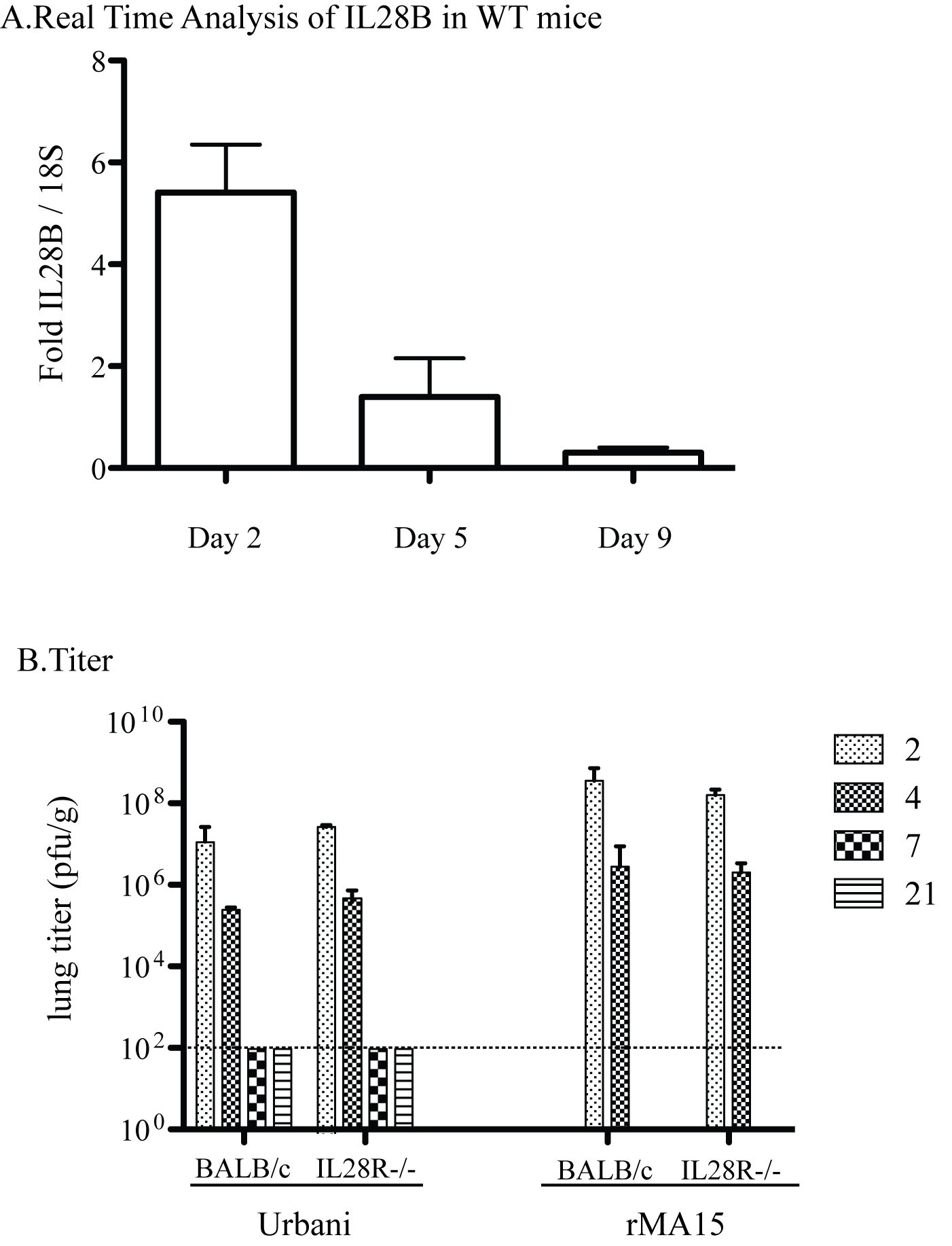 Pathogenesis of Urbani and rMA15 viruses in IL28Ra−/− mice.