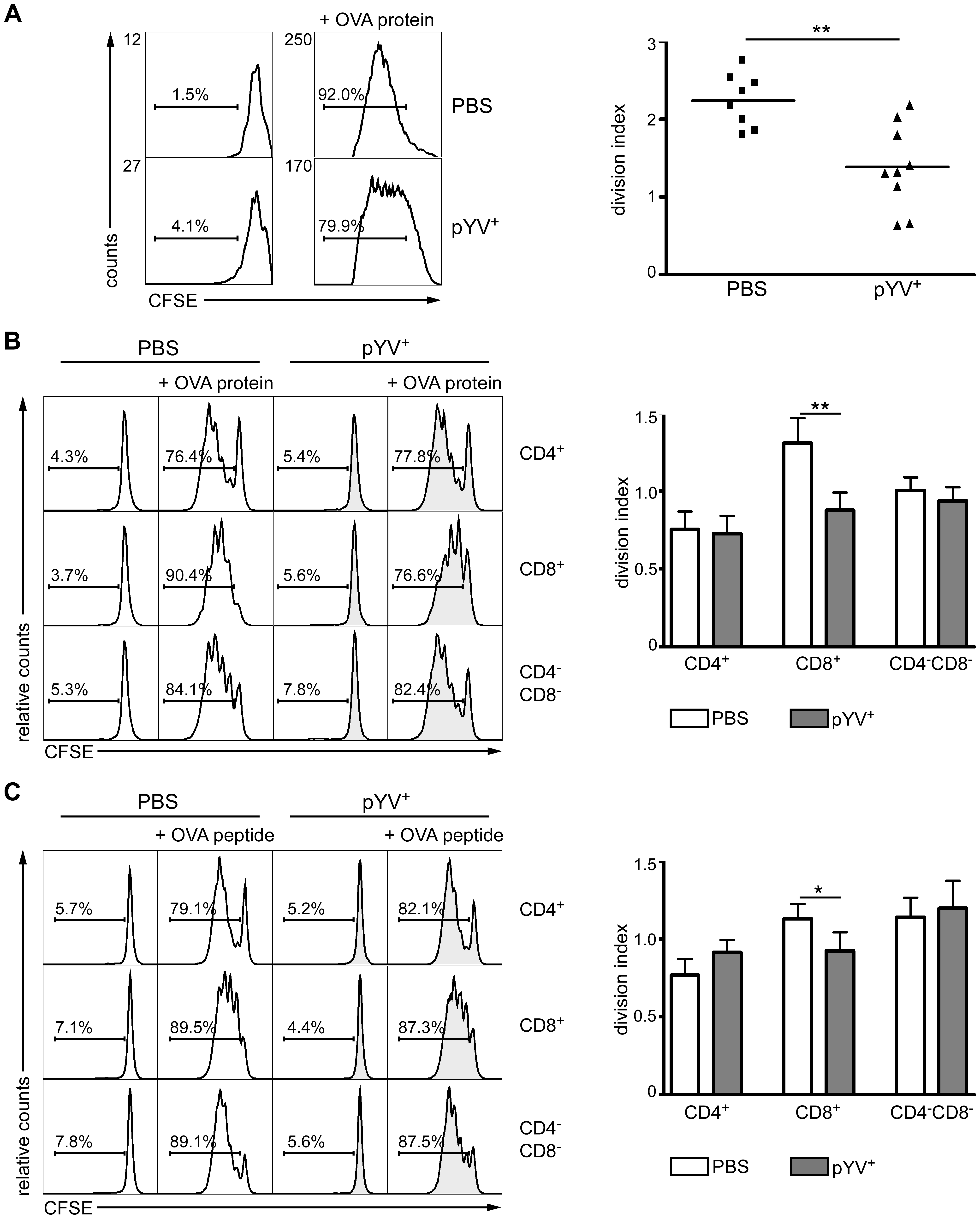 Infection of mice with Ye reduces CD4 T cell proliferation.