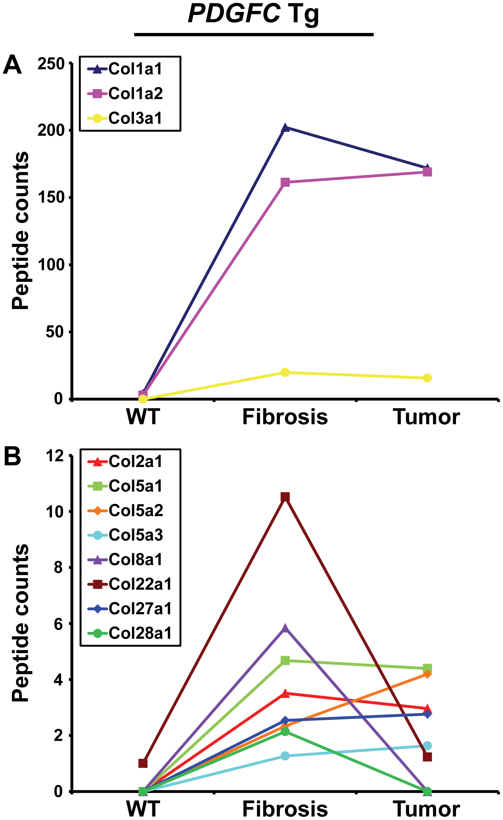 Collagen proteins up-regulated in <i>PDGFC</i> Tg fibrotic liver.