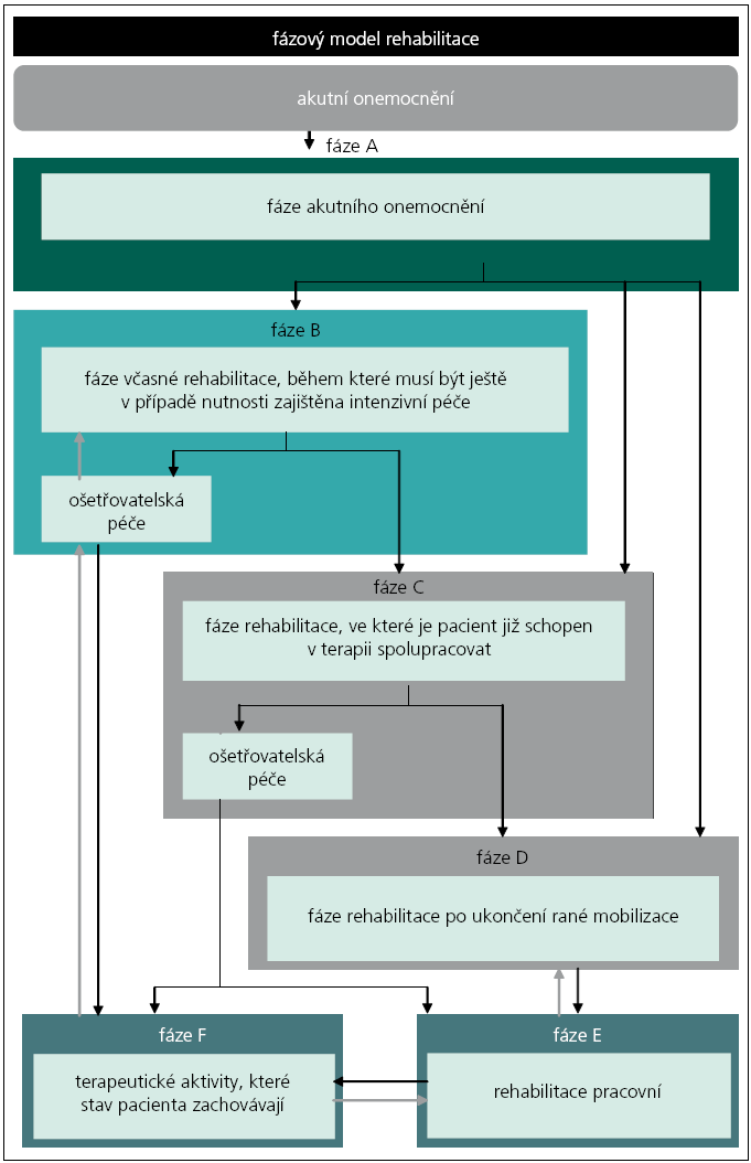 Fázový model neurologické rehabilitace v SRN.