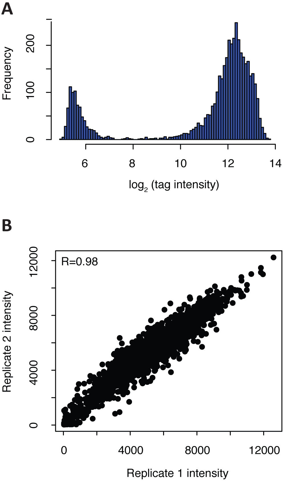 Validation of tagged <i>C. albicans</i> mutants via microarray hybridization.