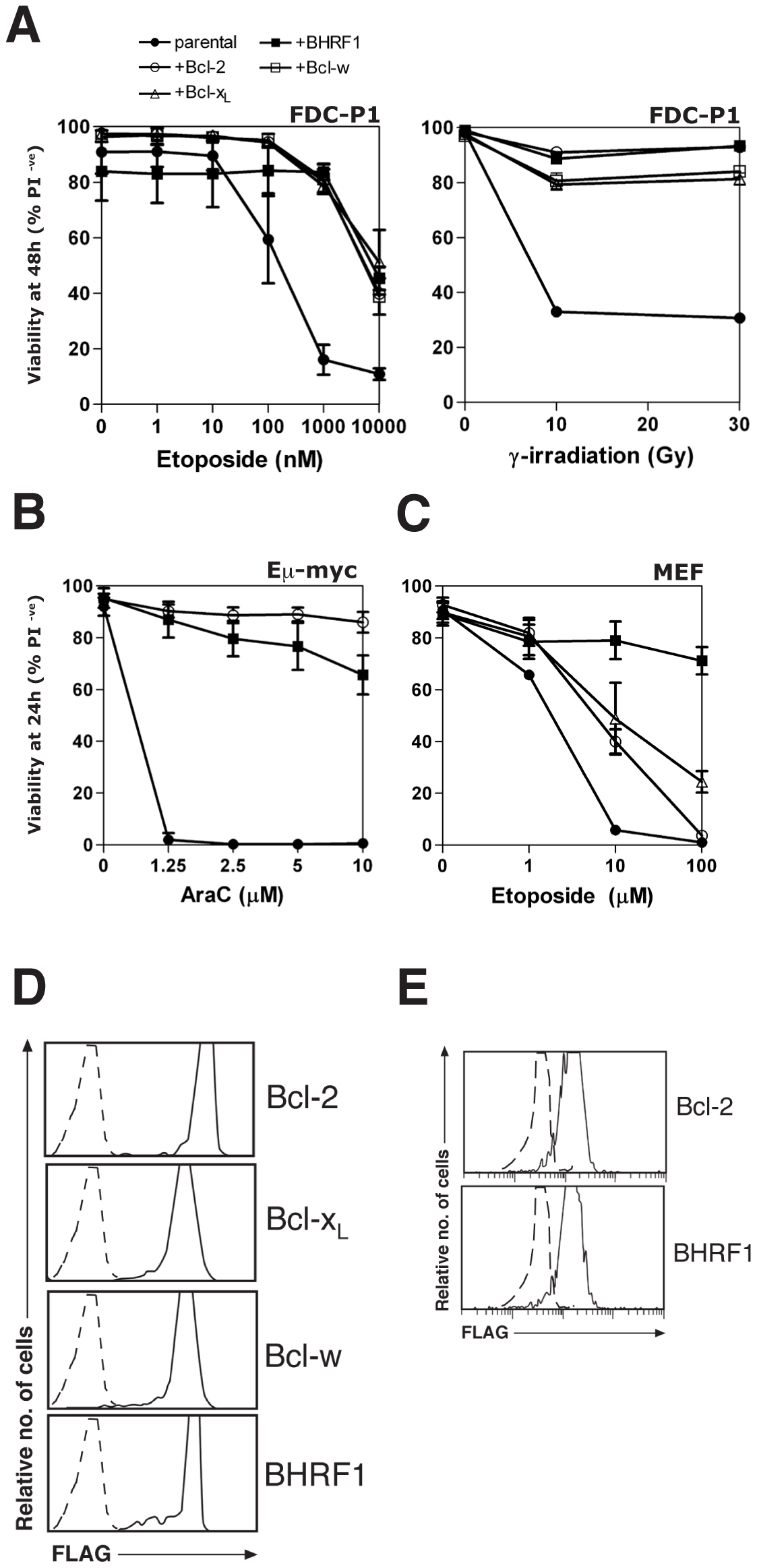 BHRF1 protects cells from diverse apoptotic stimuli.