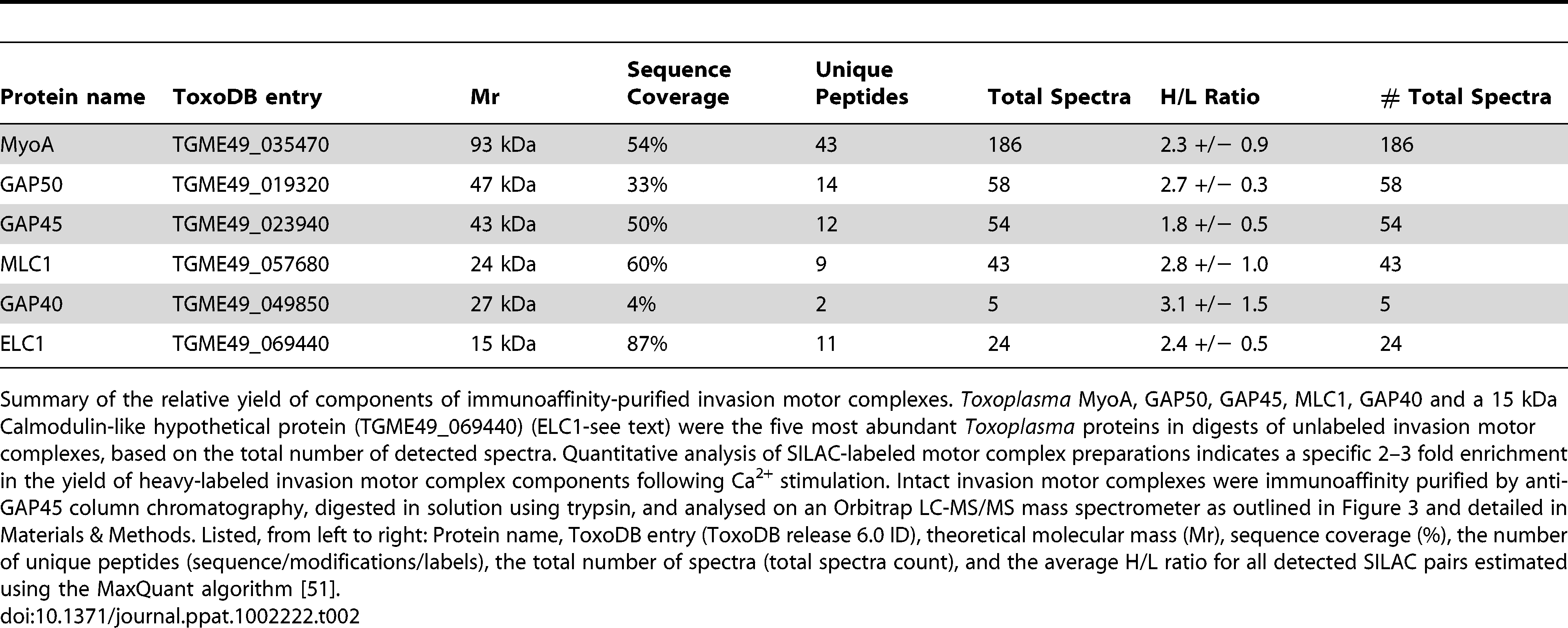 Quantitative assessment of invasion motor complex components.