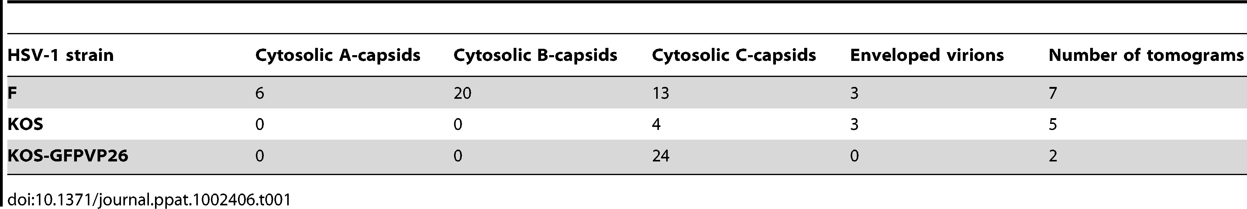 Frequency of viral particle types found in middle regions of axons for the HSV1 strains used for infection.
