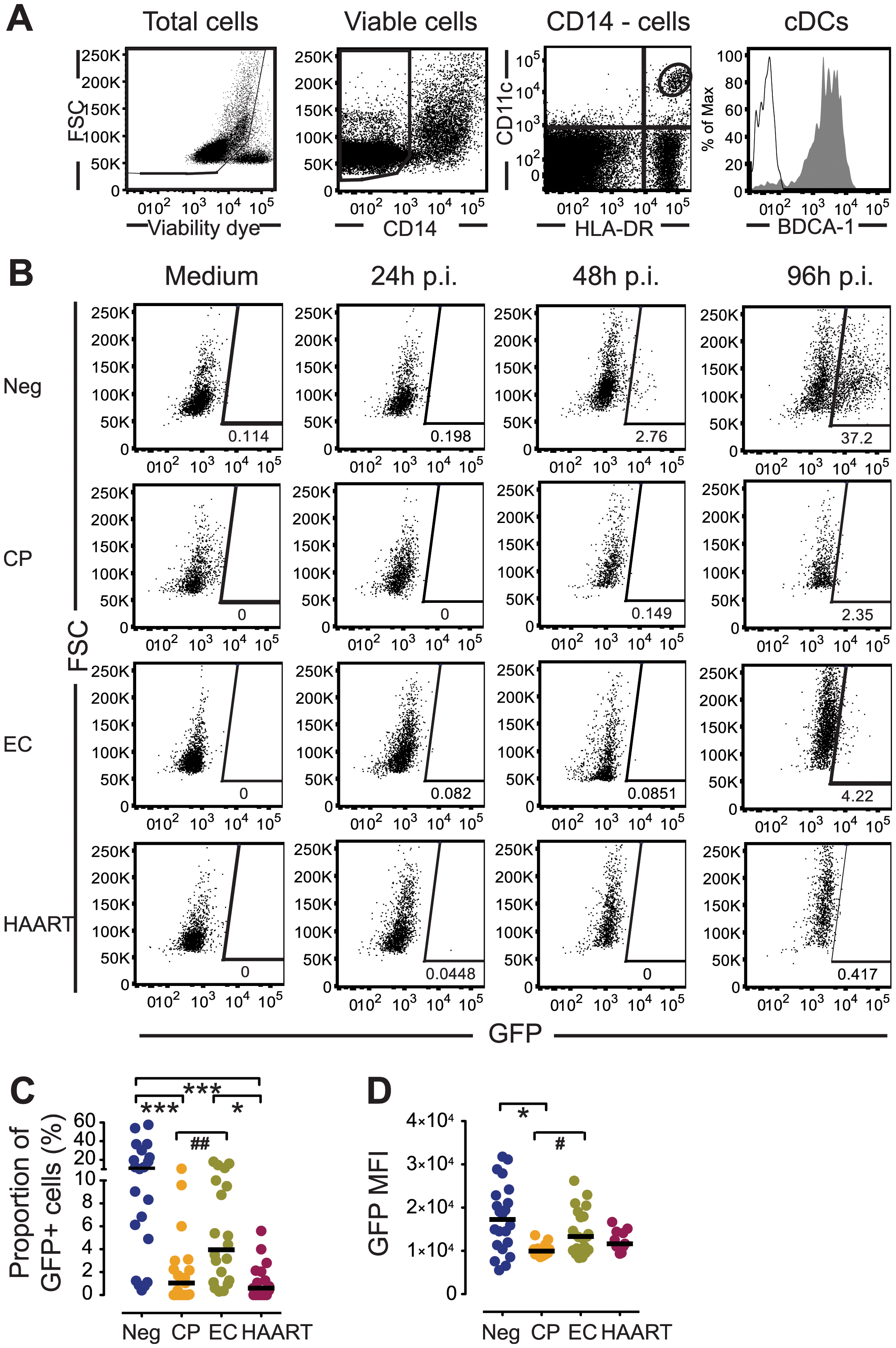 Susceptibility of primary cDCs to <i>ex-vivo</i> infection with HIV-1.