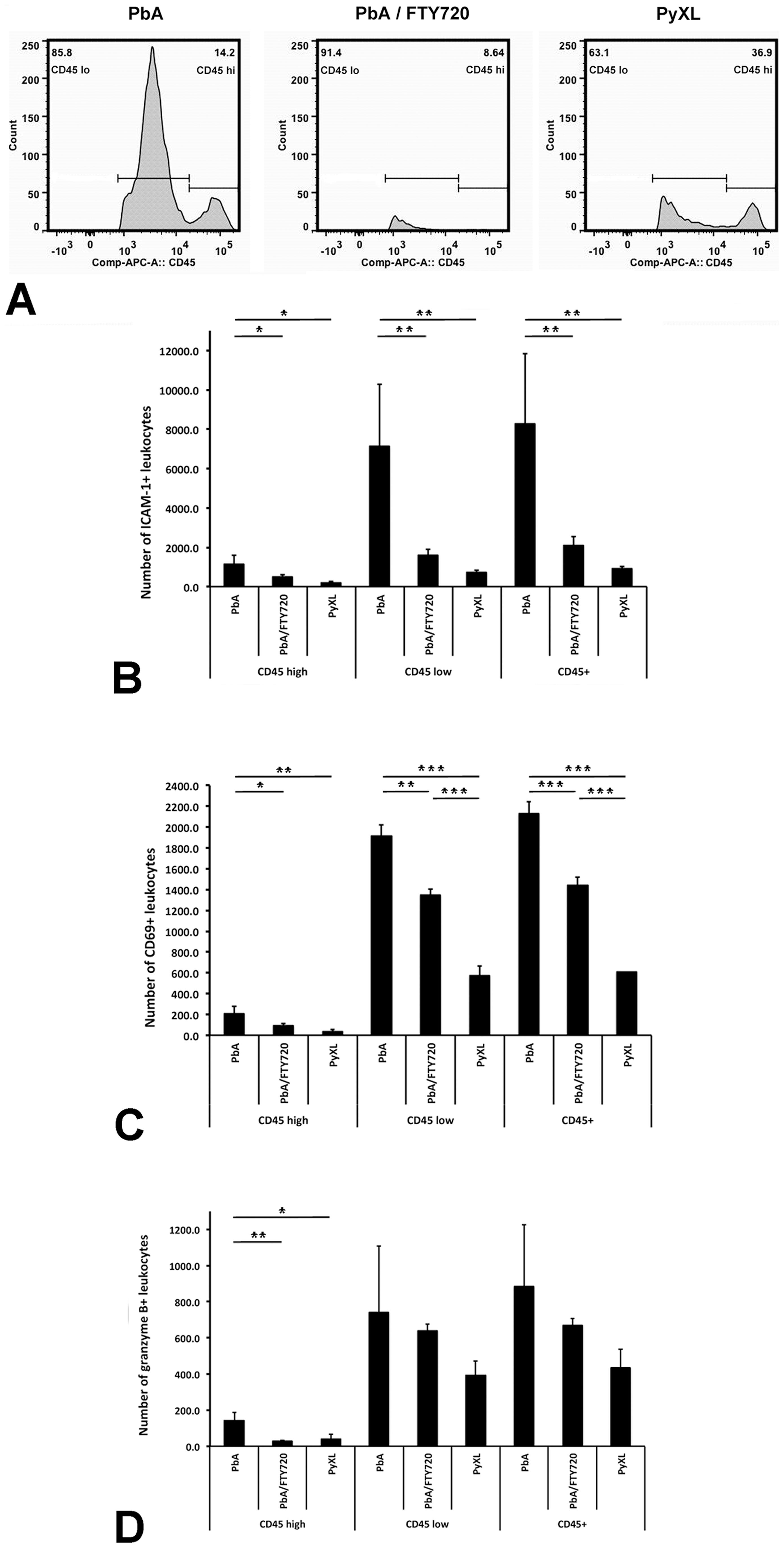 ECM is associated with brain recruitment of CD45+ leukocytes.