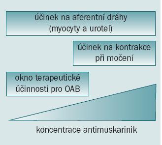 Vysvětlení pro užívání antimuskarinik při léčbě OAB/DO. Blokáda muskarinních receptorů v detruzoru i mimo něj může zabránit vzniku symptomů OAB a DO bez současného potlačení kontrakcí během močení.