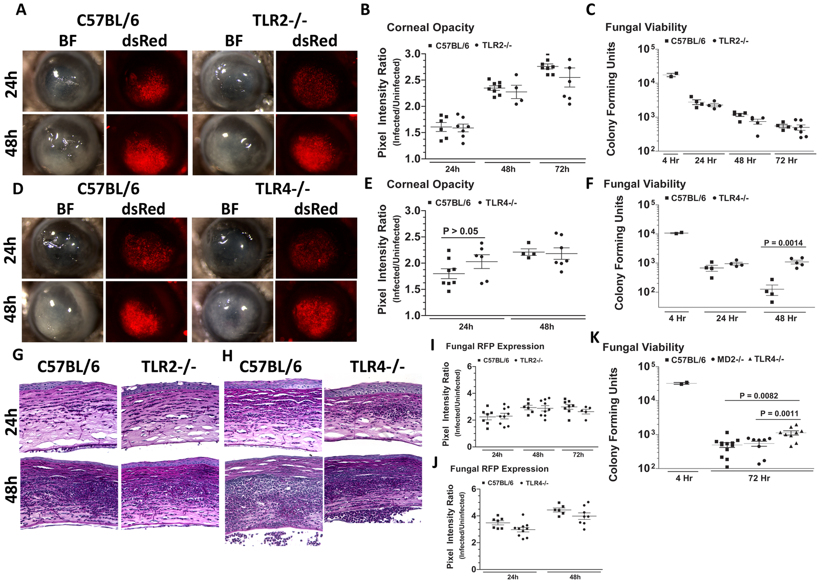 The role of TLR2, TLR4, and MD-2 in <i>A. fumigatus</i> keratitis.