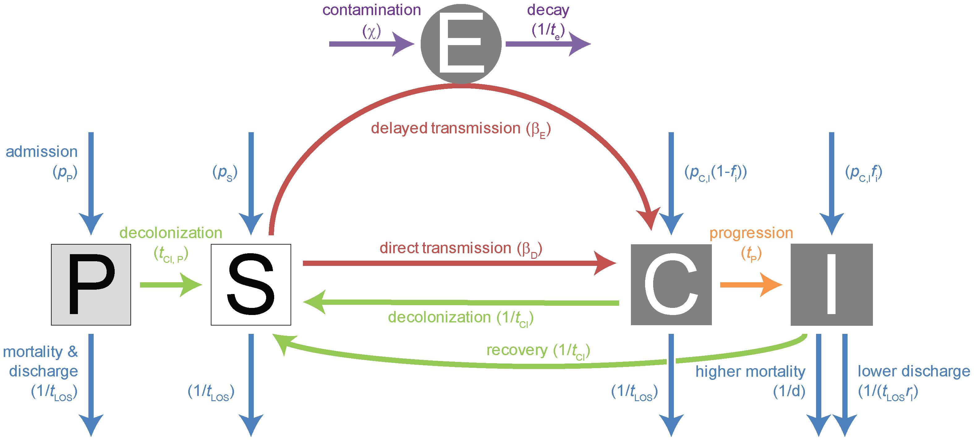 Compartmental model for single strain.