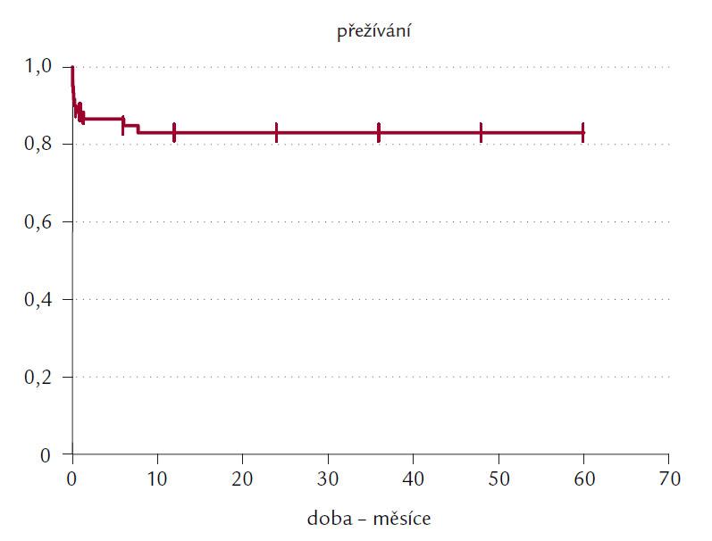 Přežívání – Kaplan- Meyerova metoda (60 osob, 10 zemřelo a 50 žije – čas je v měsících, 6měsíční přežívaní je 88 %, roční přežívání je 83 %).