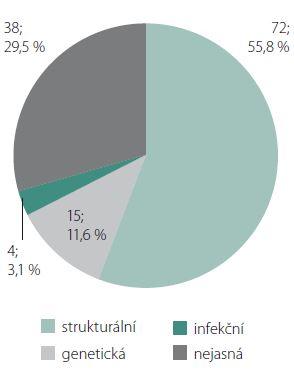 Klasifikace epilepsie dle etiologie sledovaného souboru 129 pacientů (počet pacientů; procenta). Etiologie strukturální (= MR-pozitivní), genetická, infekční (etiologické agens cytomegalovirus a Toxoplasma gondii) a nejasná; imunitní a metabolická definitivně neprokázána prozatím u žádného pacienta. Graph 1. The etiological classification of epilepsy in the observed group of 129 patients (displayed in number of patients; percentages).  Structural etiology (= MRI-positive), genetic, infectious (etiological agents Cytomegalovirus and Toxoplasma gondii) and unknown etiology; immune and metabolic etiology has not been definitely proven in any patient.