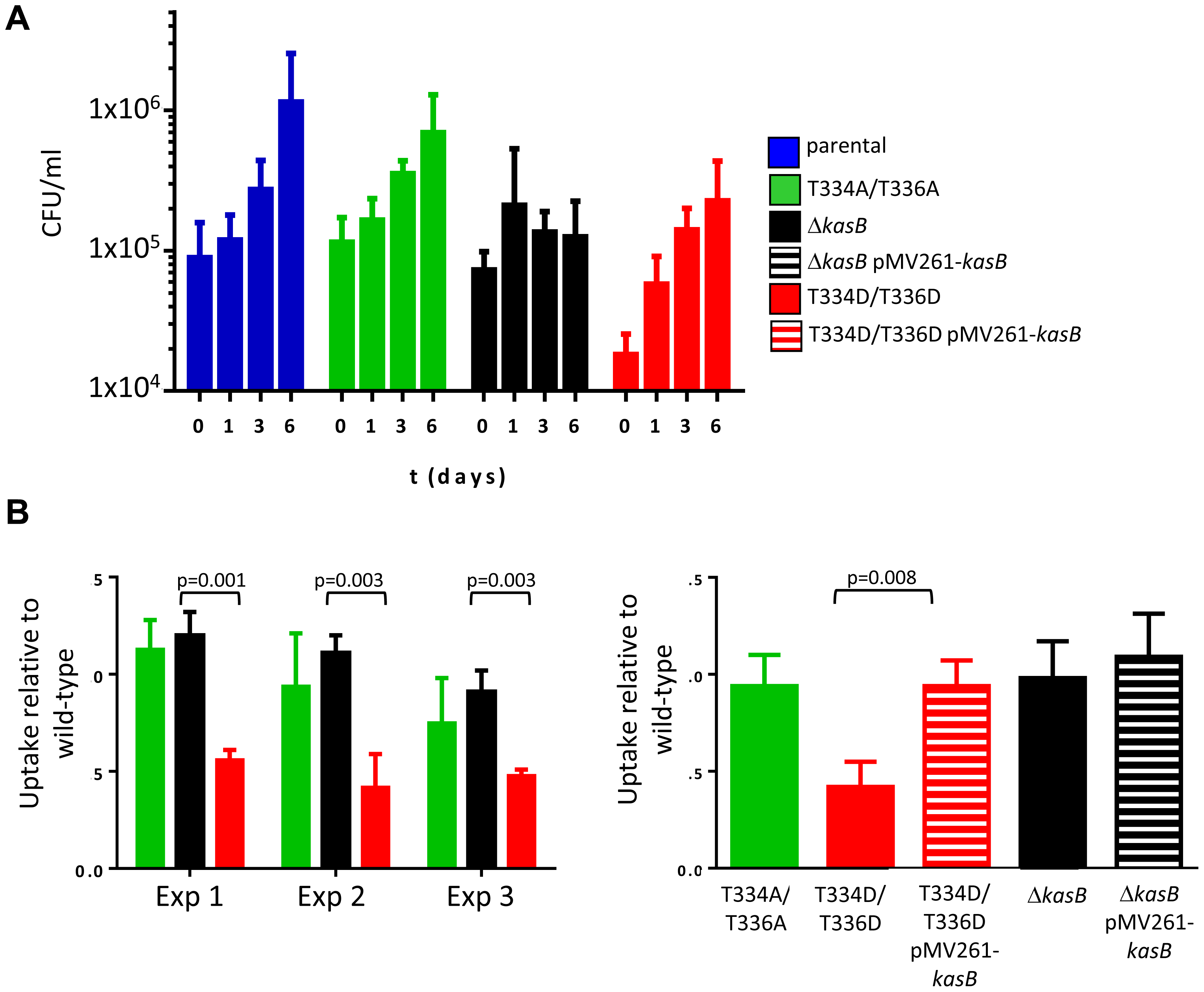 Infection of C57BL/6 bone marrow-derived macrophages with <i>M. tuberculosis kasB</i> variants. (A) Growth of the KasB mutants and parental strain in BMDM.