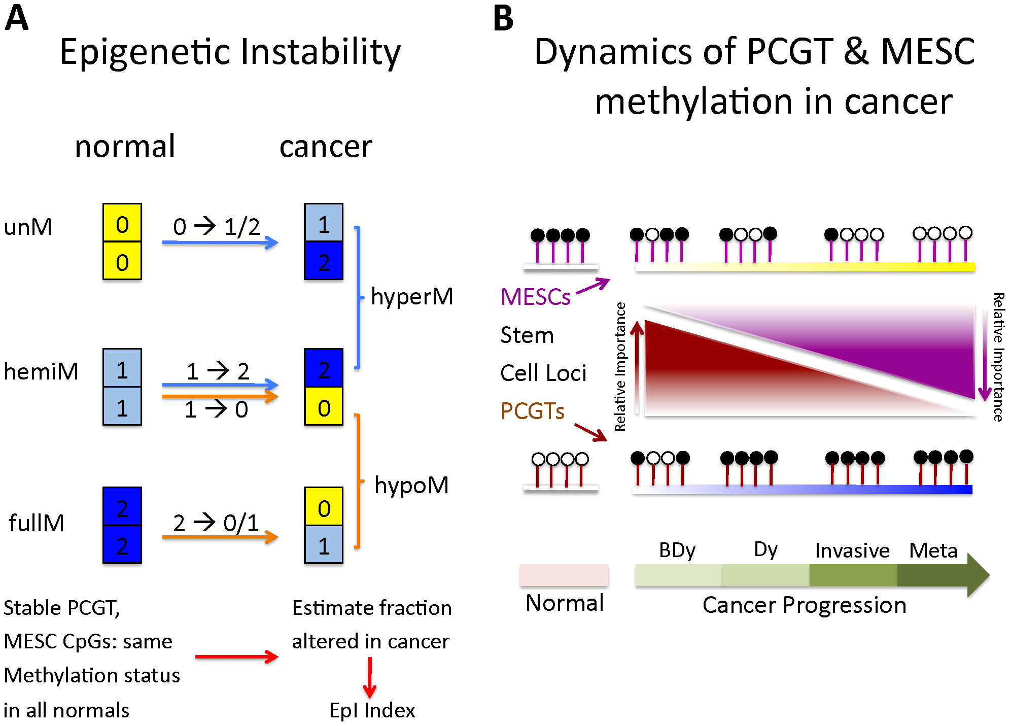 Definition of epigenetic instability indices and dynamics of PCGT and MESC methylation in cancer.