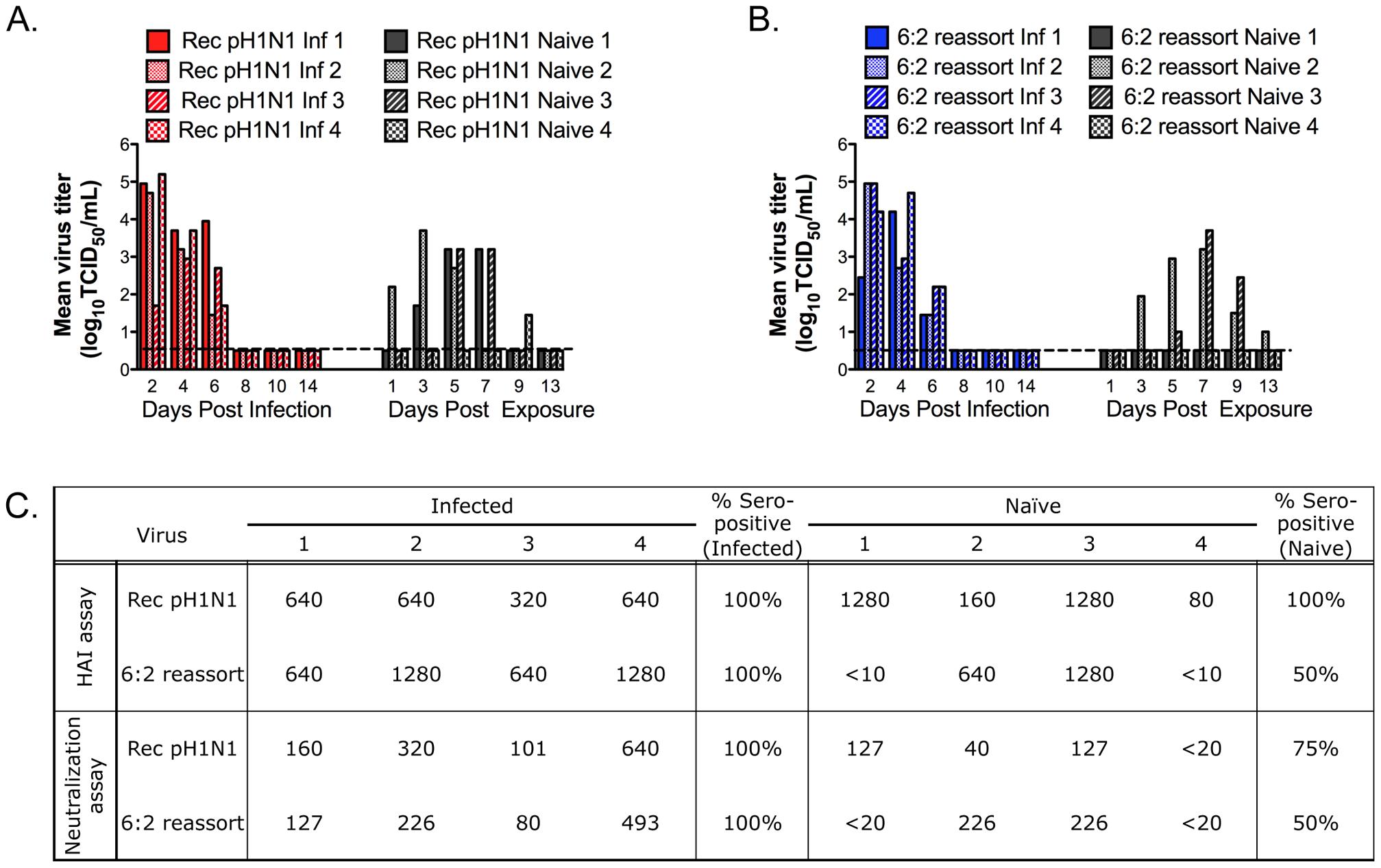 Eurasian-origin NA and M gene segments contribute to RD transmission of the pH1N1 virus.