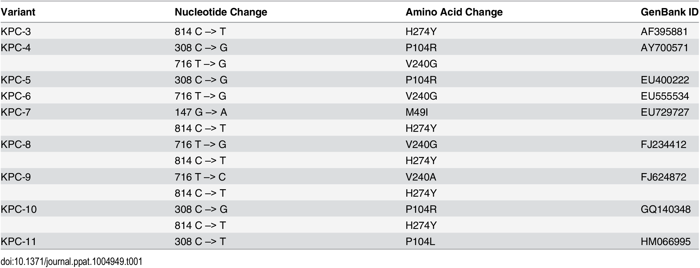 Nucleotide polymorphisms and amino acid changes in variants as compared to KPC-2.