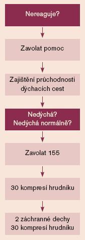 Algoritmus BLS u dospělých při mimonemocniční zástavě [25]. BLS (basic life support) – základní neodkladná resuscitace.