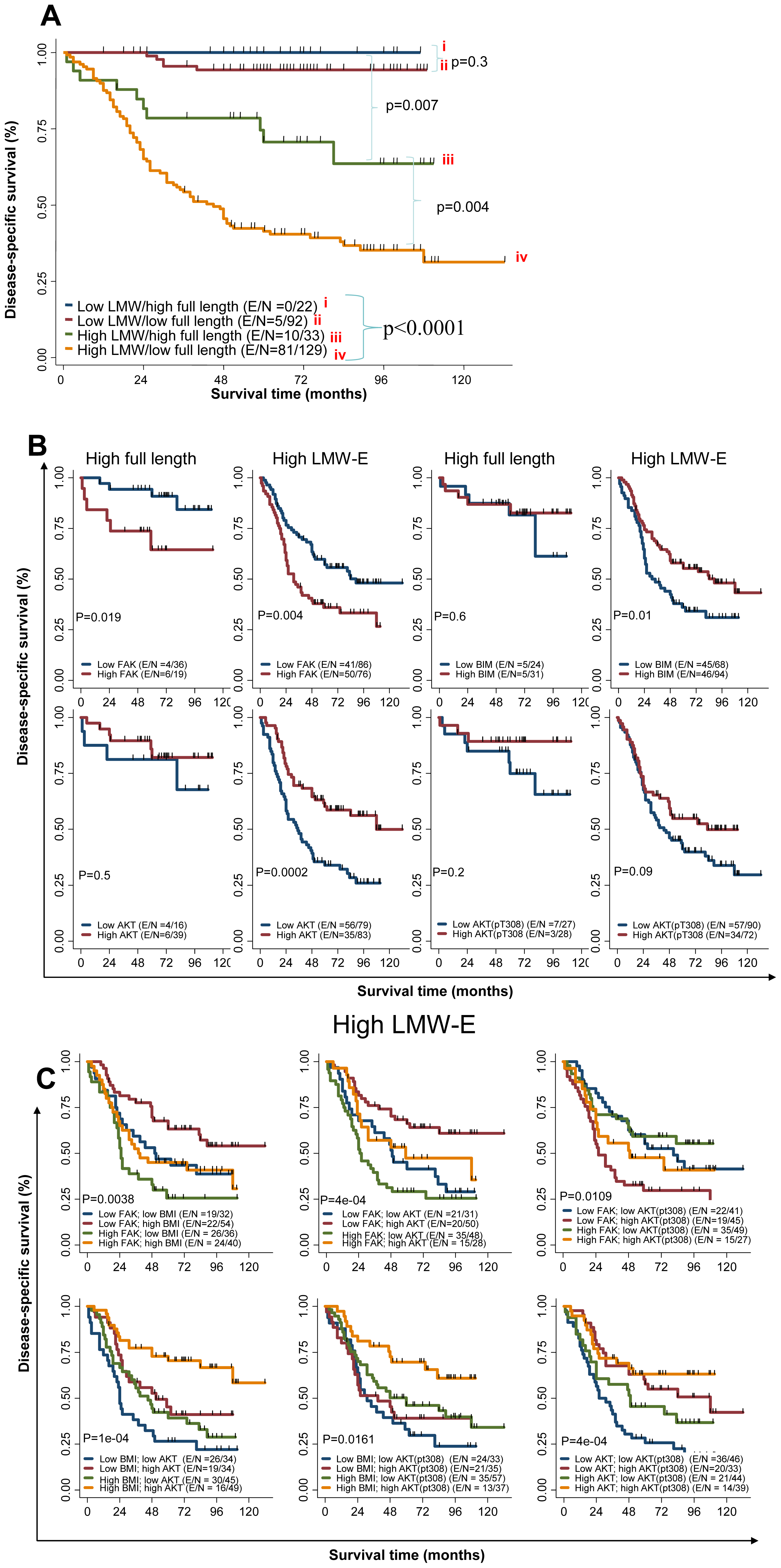Activated b-Raf-ERK1/2-mTOR signaling pathway and high LMW-E expression predict poor survival in breast cancer patients.