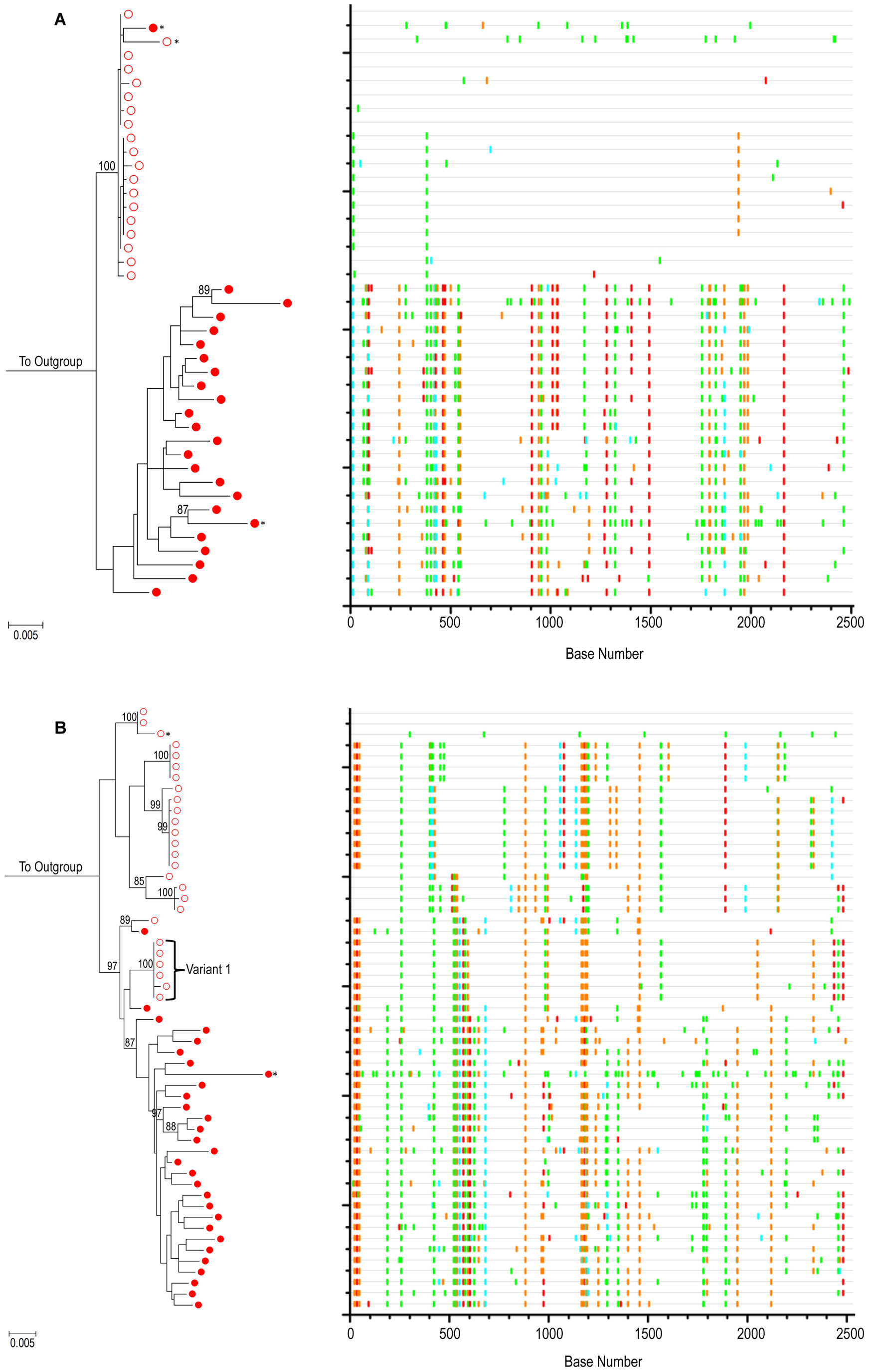 Evolution of HIV-1 <i>env</i> in the absence of cART – positive control patients.