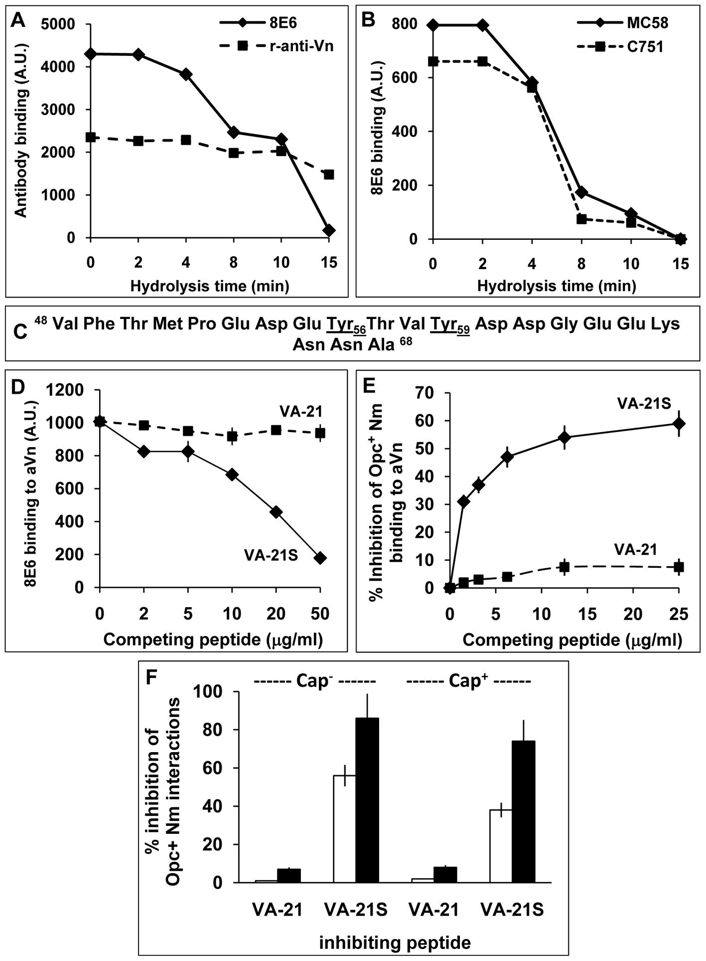 The nature of the vitronectin epitope recognised by <i>N. meningitidis</i> Opc.
