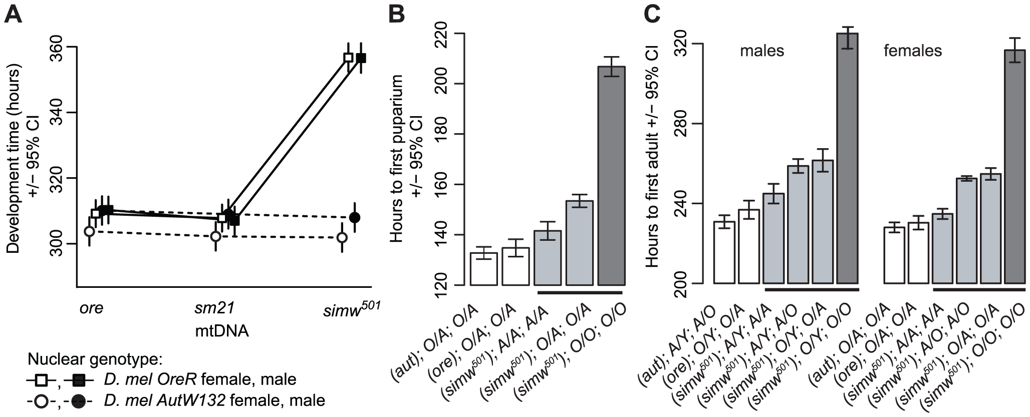 Effects of a mitochondrial–nuclear interaction on development.