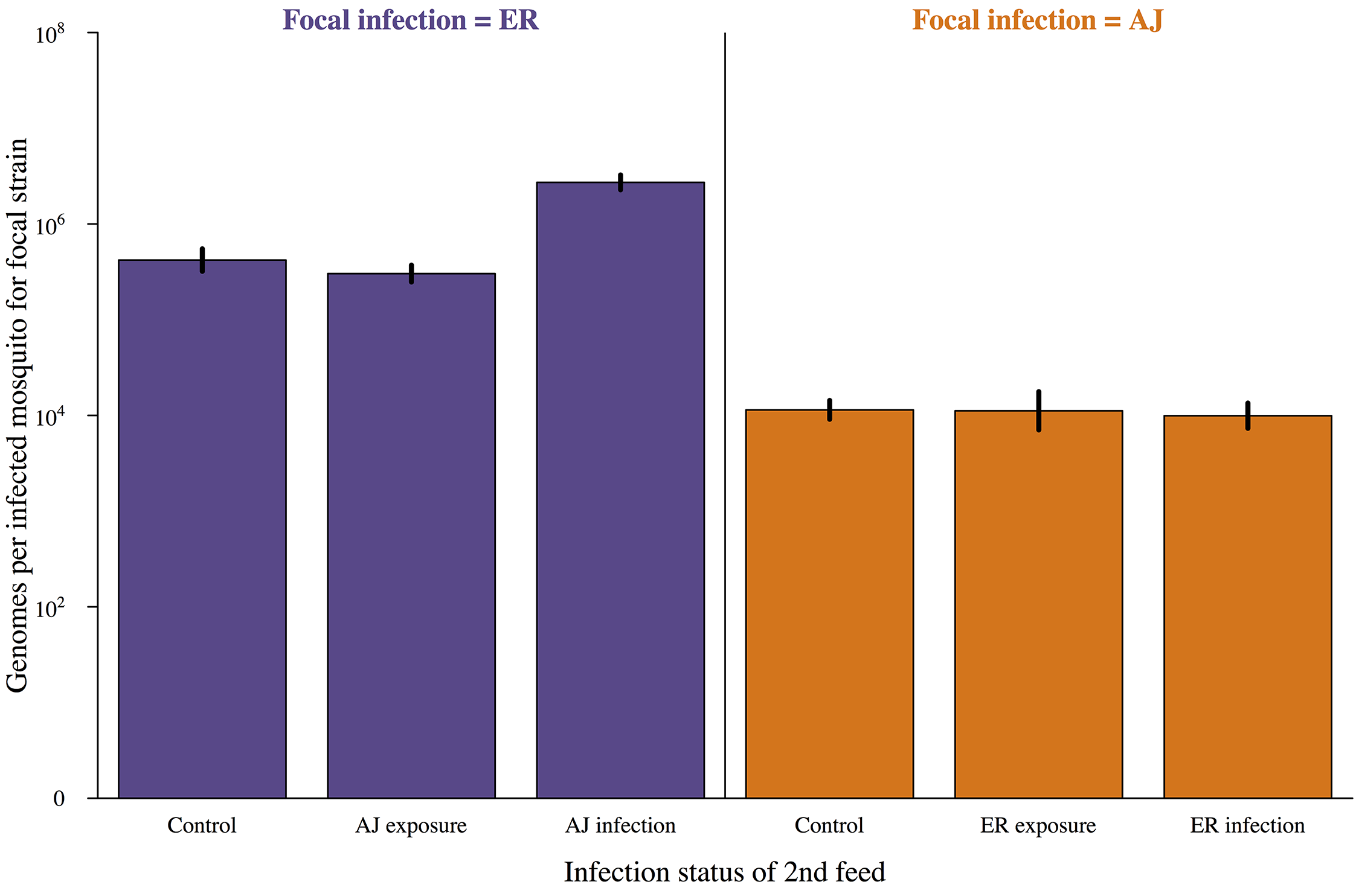 Subsequent infection does not negatively impact on parasite development.