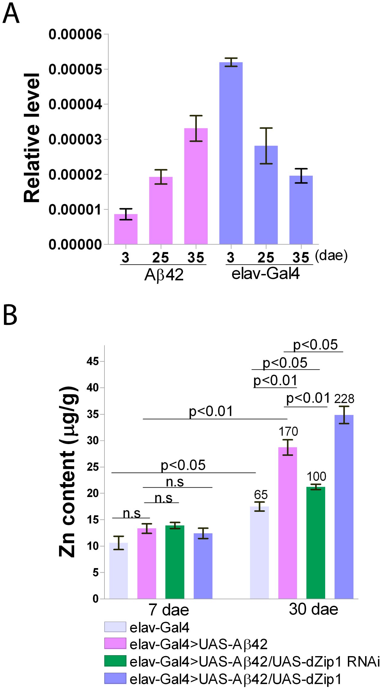 Brain <i>dZip1</i> expression and zinc levels are affected by Aβ42 expression and aging.