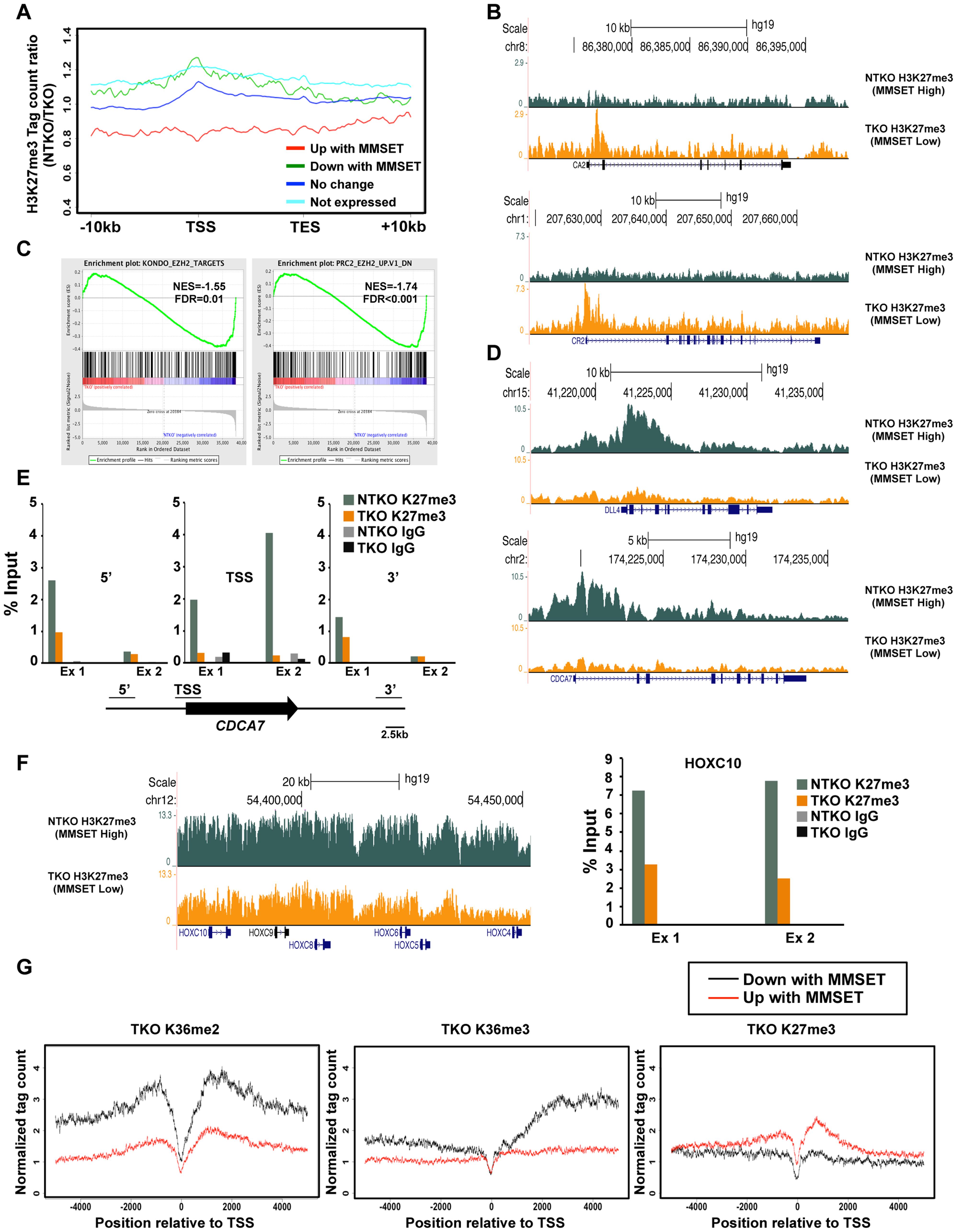 MMSET alters genome-wide patterns of H3K27me3 methylation.