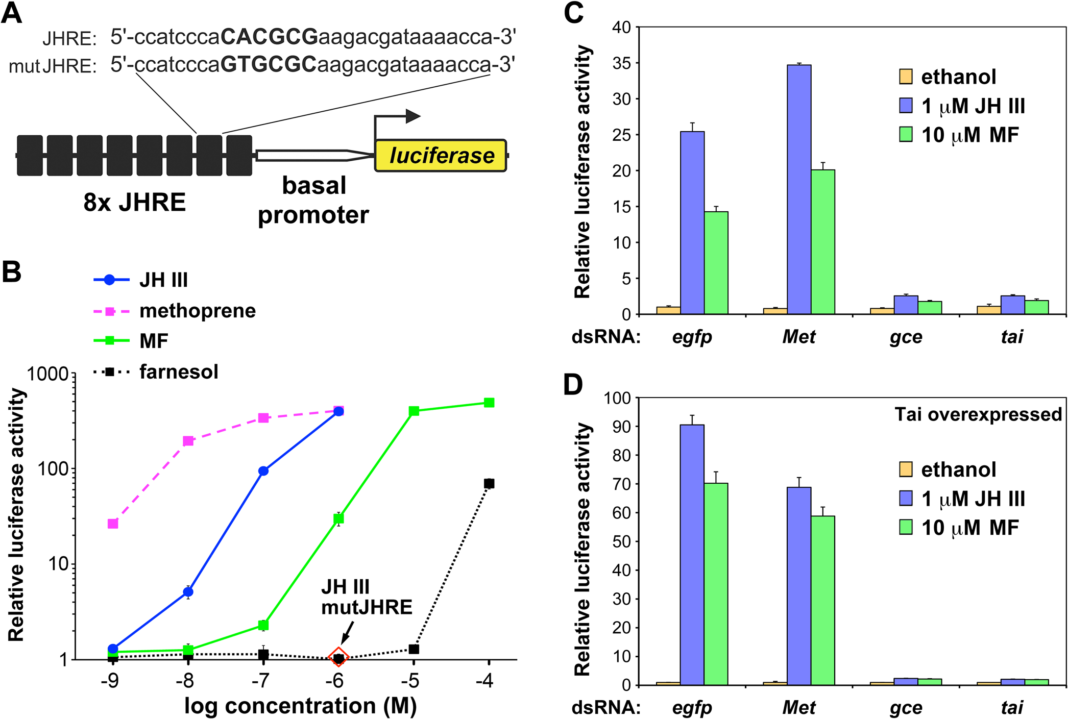 Transcriptional activation by JH III, methyl farnesoate (MF), and methoprene through Gce in <i>Drosophila</i> S2 cells.