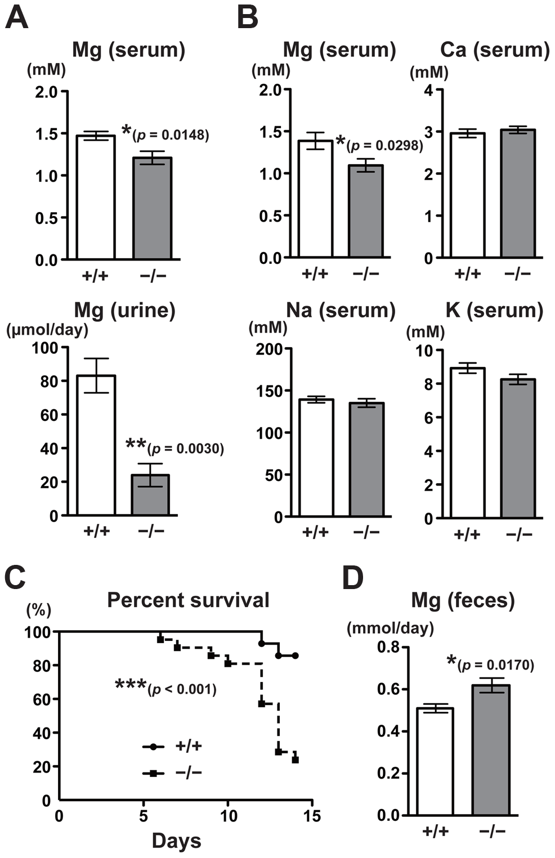 Malabsorption of magnesium in CNNM4-KO mice.