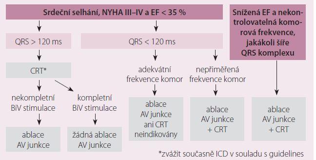 Indikace ablace AV junkce u pacientů se symptomatickou fibrilací síní a optimalizovanou farmakologickou léčbou [9].