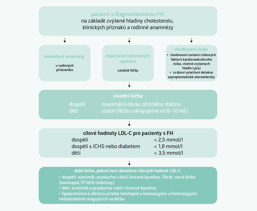 Schéma. Strategie léčby pacienta s FH. Upraveno podle [11]