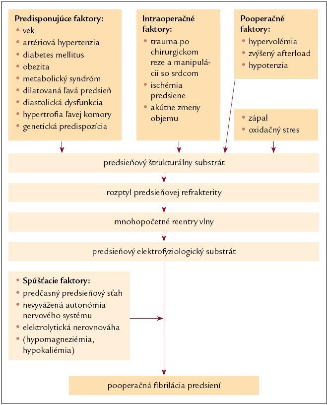 Schéma 1. Patogenéza pooperačnej fibrilácie predsiení. Upravené podľa [6].