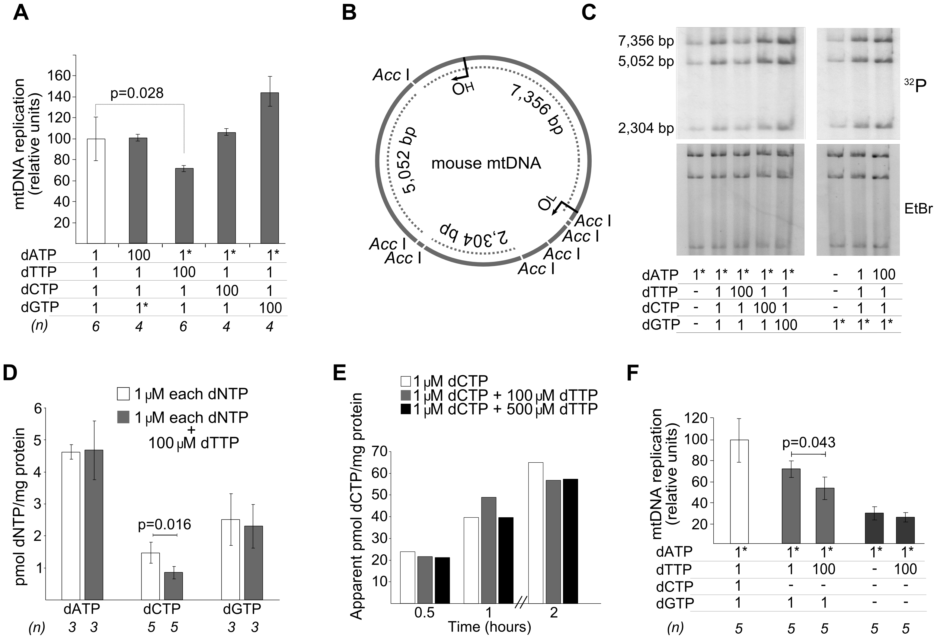 dTTP excess causes a decrease of <i>in organello</i> mtDNA synthesis associated with secondary dCTP depletion.