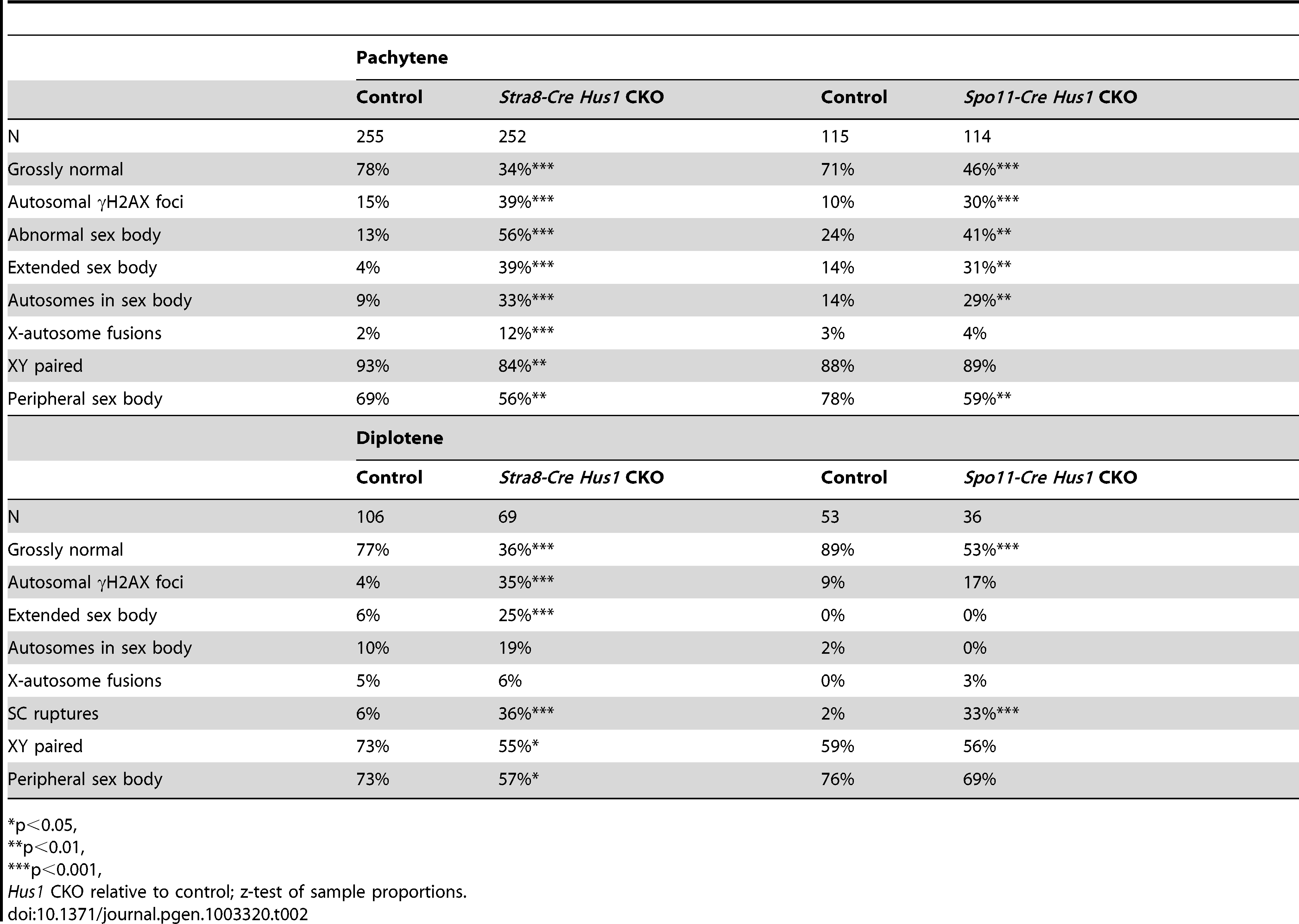 Patterns of γH2AX localization in <i>Stra8-Cre</i> and <i>Spo11-Cre Hus1</i> CKO spermatocytes.