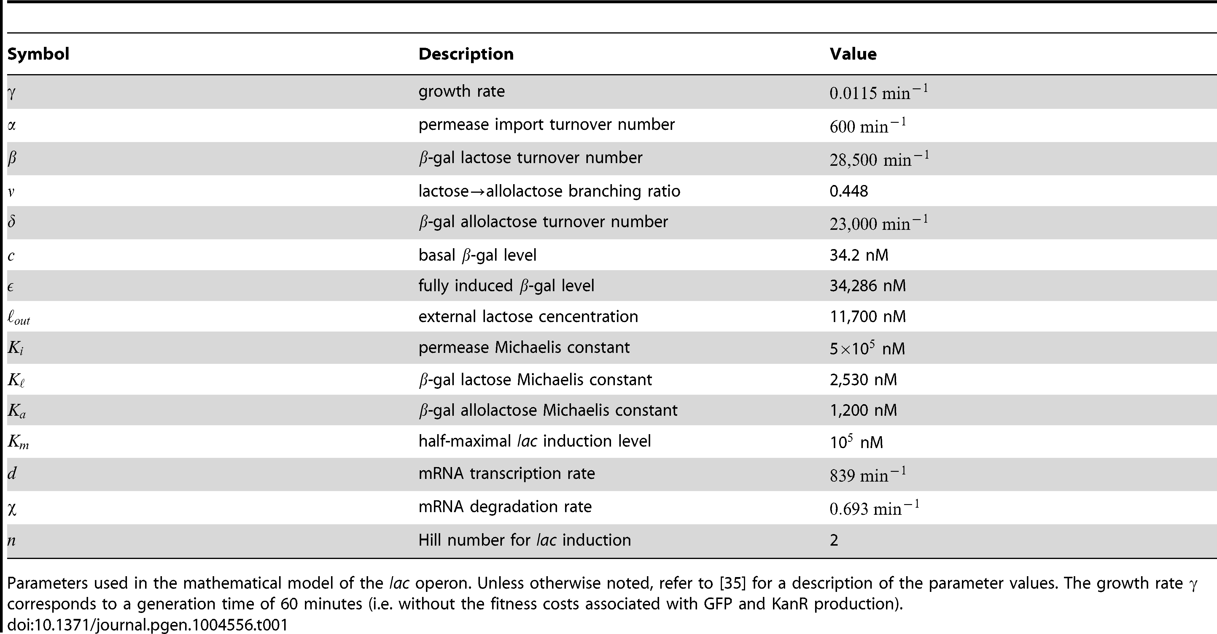 Model parameters.