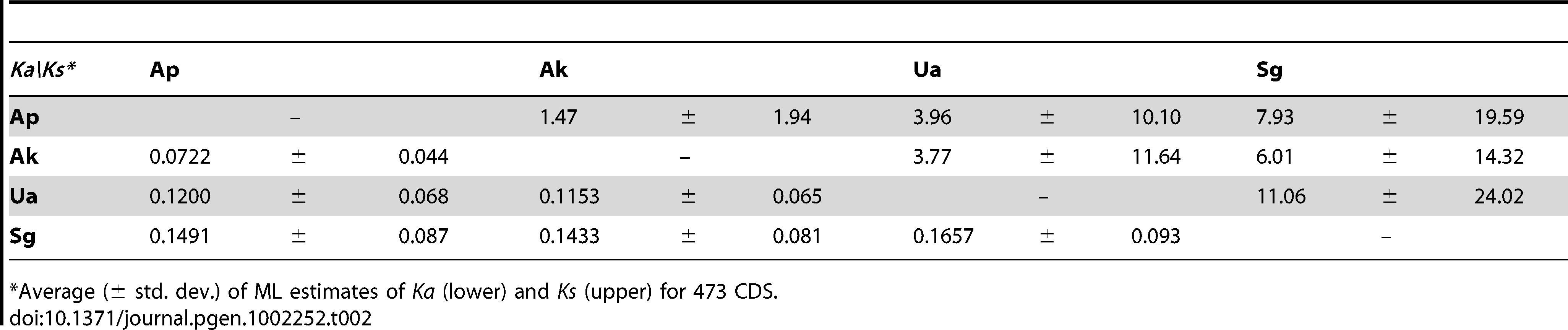 Synonymous and nonsynonymous divergences averaged across orthologous protein-coding genes of <i>Buchnera</i>-Ap, <i>Buchnera</i>-Ak, <i>Buchnera</i>-Ua, and <i>Buchnera</i>-Sg.