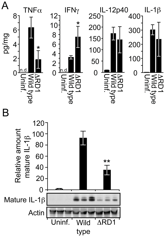 Esx-1 promotes secretion of IL-1β <i>in vivo</i>.