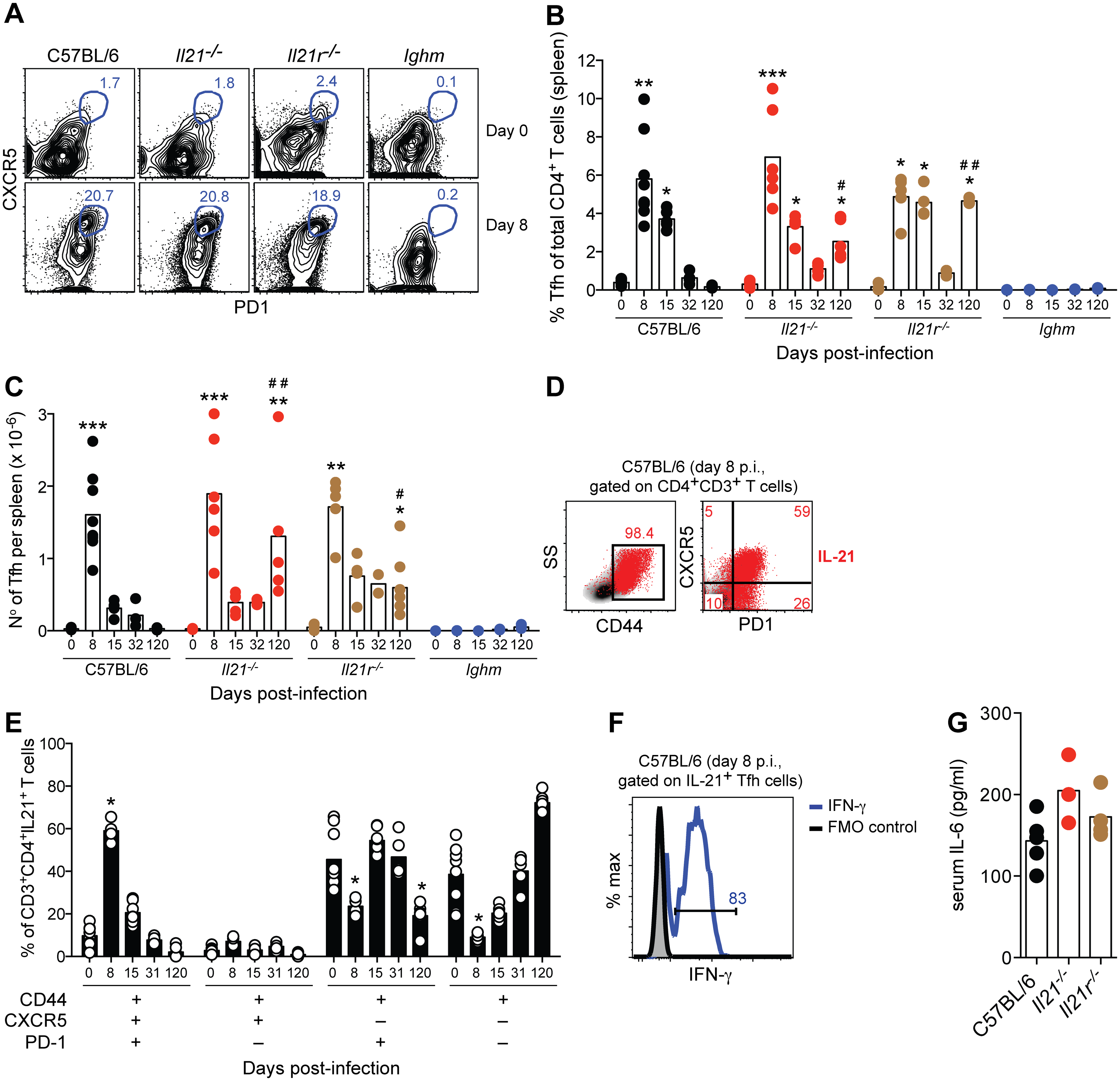 IL-21-producing Tfh cells are activated during acute <i>P</i>. <i>chabaudi</i> infection.