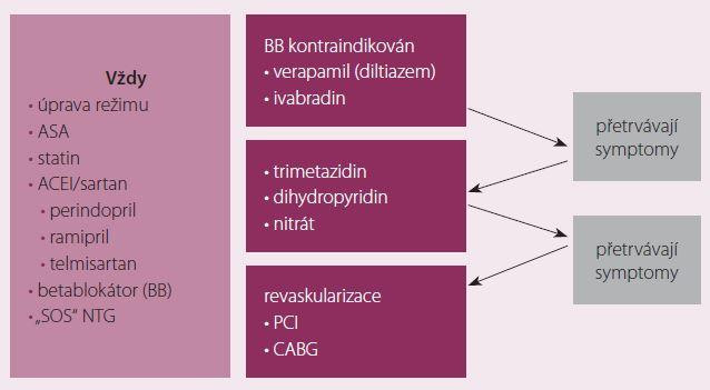 Strategie léčby námahové anginy pectoris.