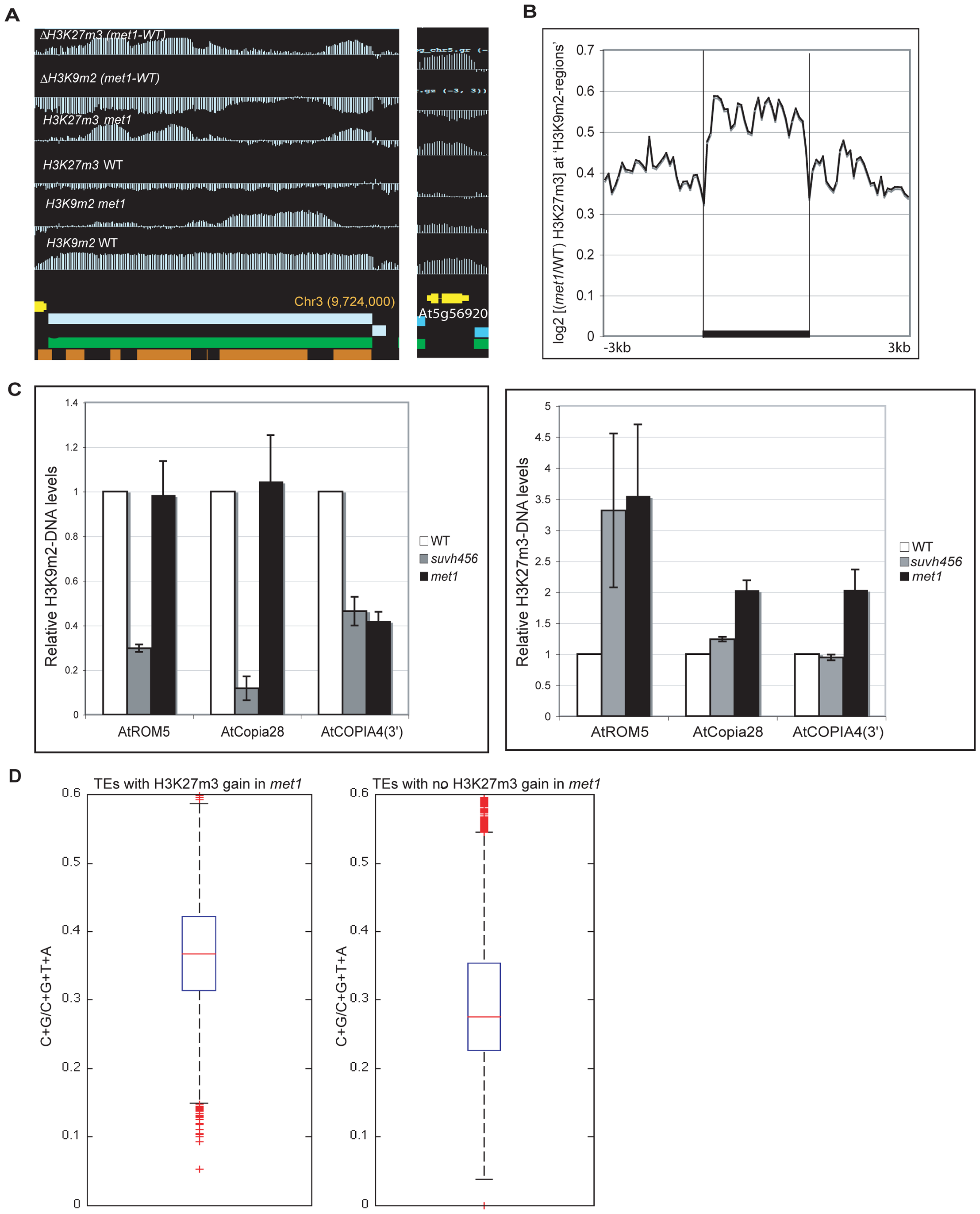Ectopic gain of H3K27m3 at DNA hypomethylated regions.