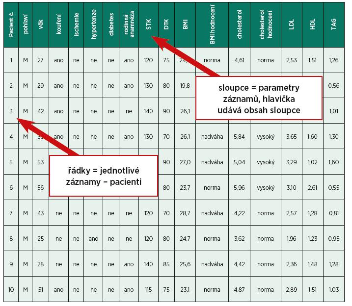 Příklad dat uložených pro statistické zpracování